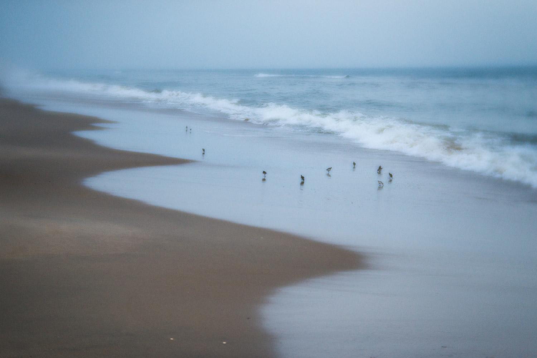 pittsburgh-family-photographer-300.jpg