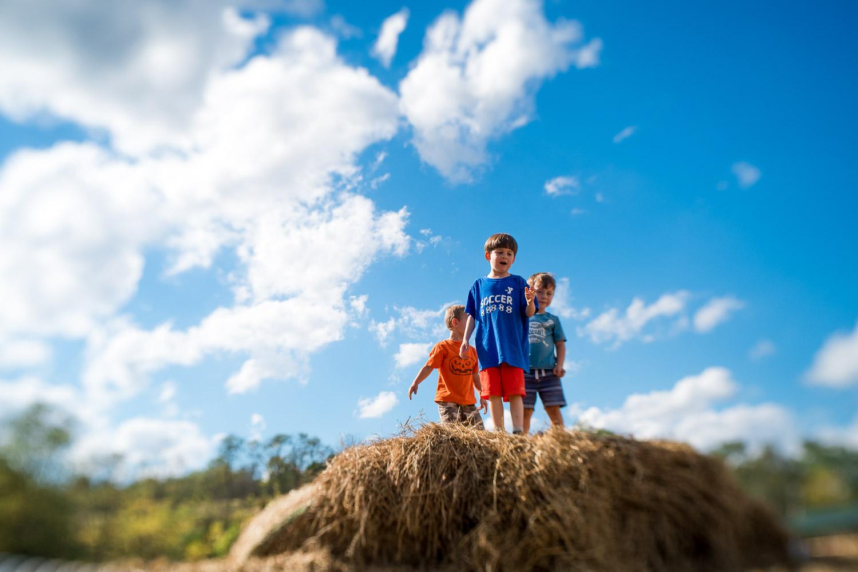 pittsburgh-family-photographer-350-2.jpg