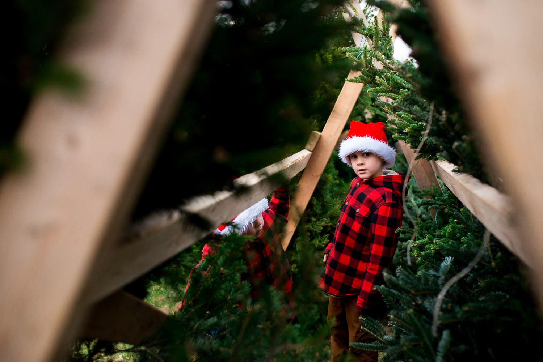 pittsburgh-family-photographer-395.jpg