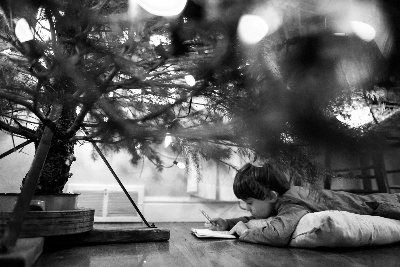 pittsburgh-family-photographer-402.jpg