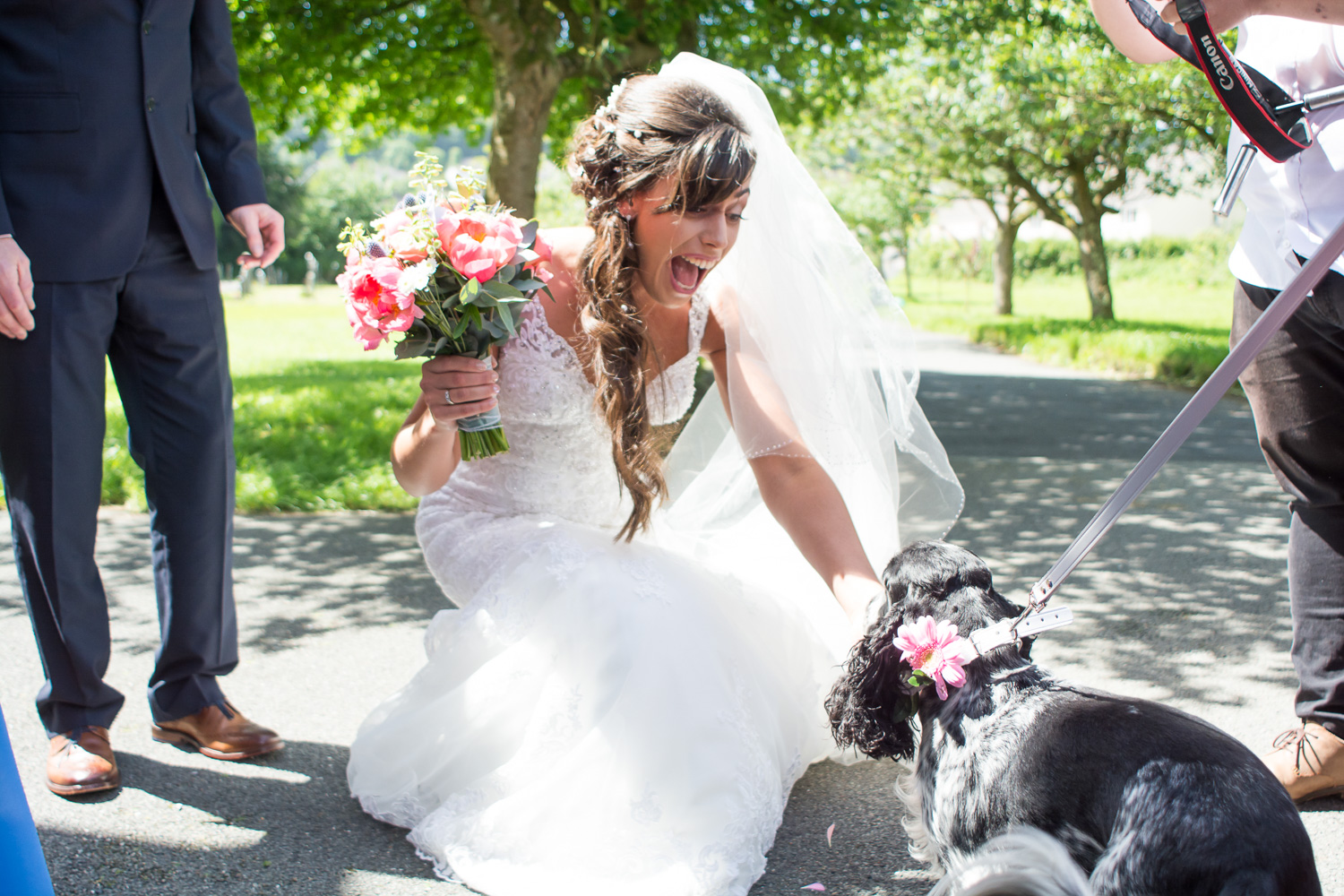 the bride and her dog outside st mary's church plympton plymouth