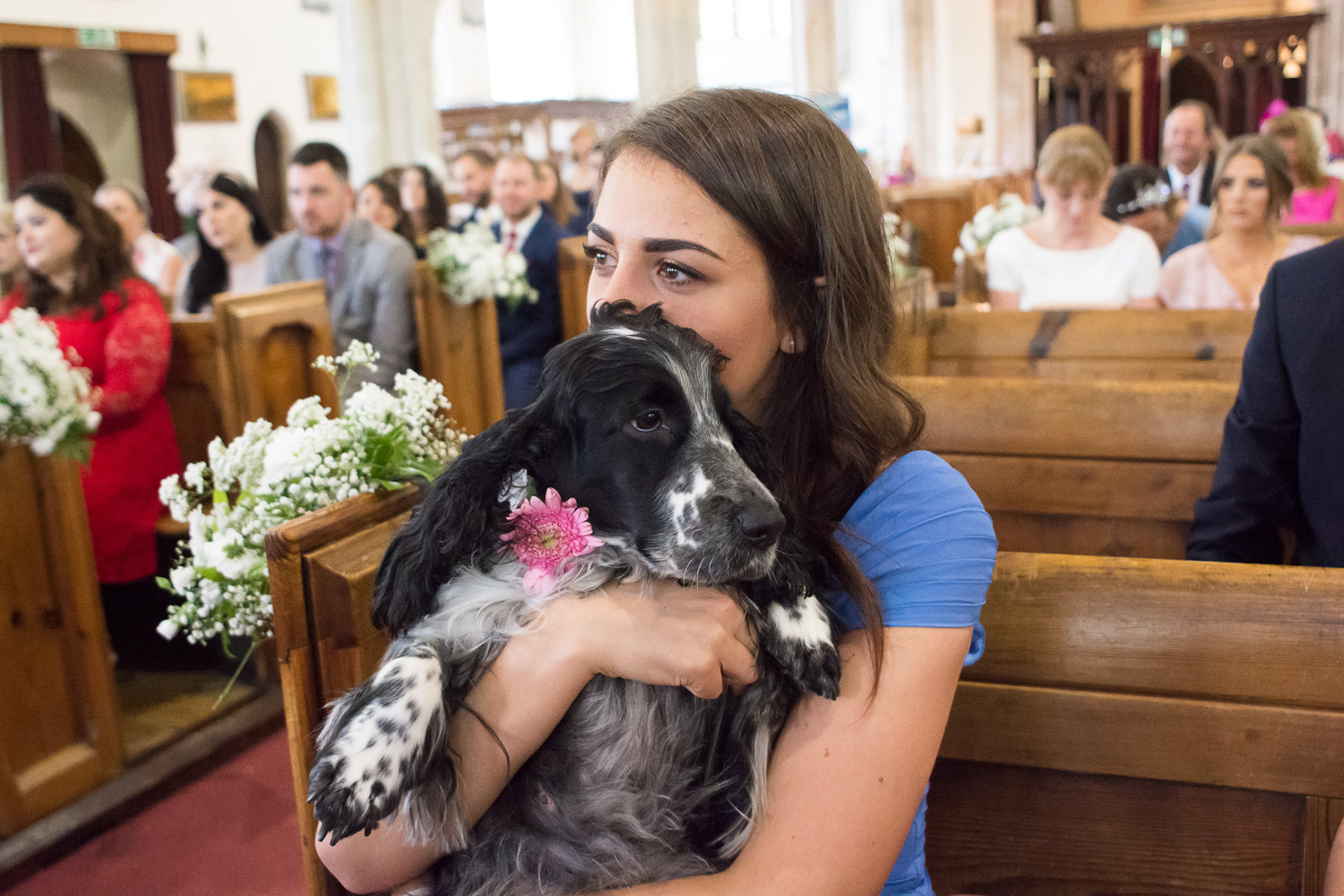 happy tears and doggy snuggles at st marys church plympton plymouth