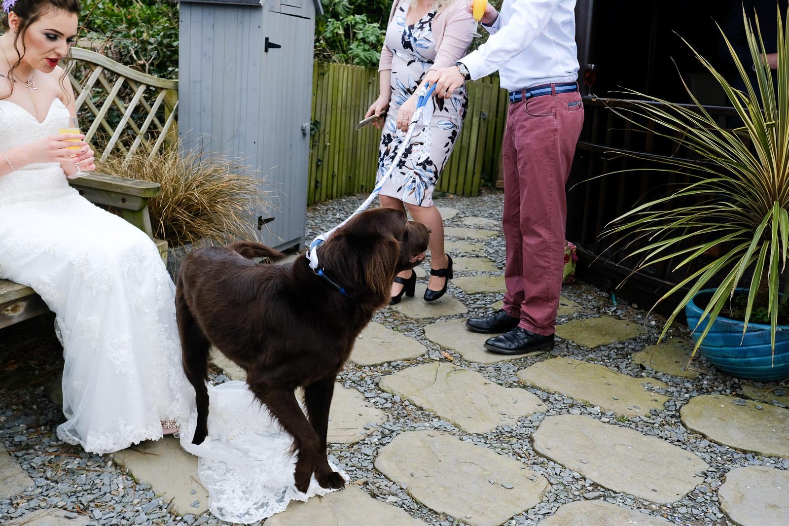 Polhawn Fort Wedding Photography 042.jpg