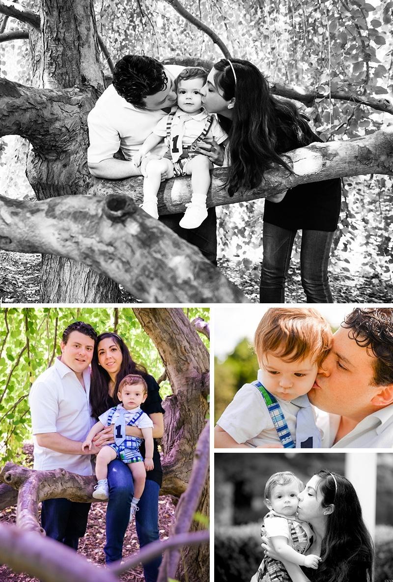 Family Photos under a tree