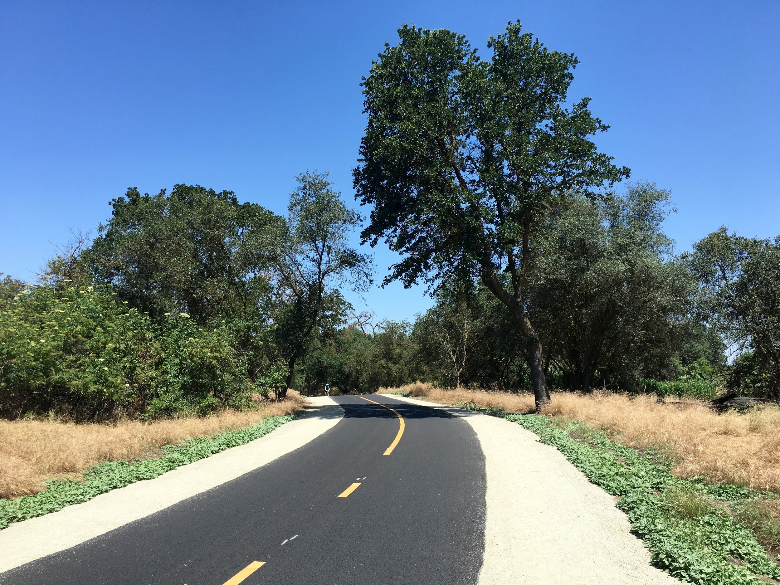 The amazing American River Trail goes for 30 miles through Sacramento to Soledad.