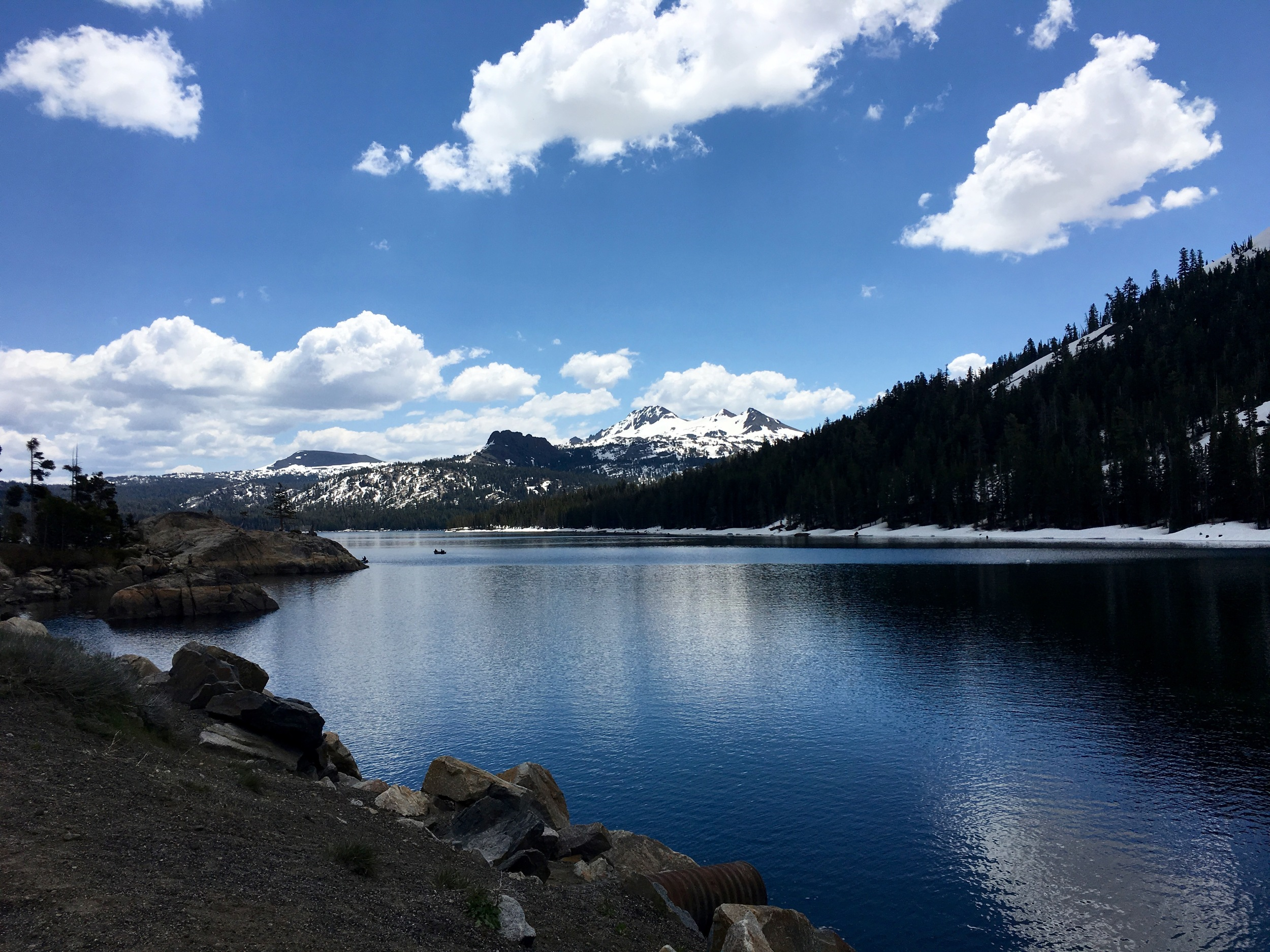Near Carson Pass, the route I took over the Sierra.