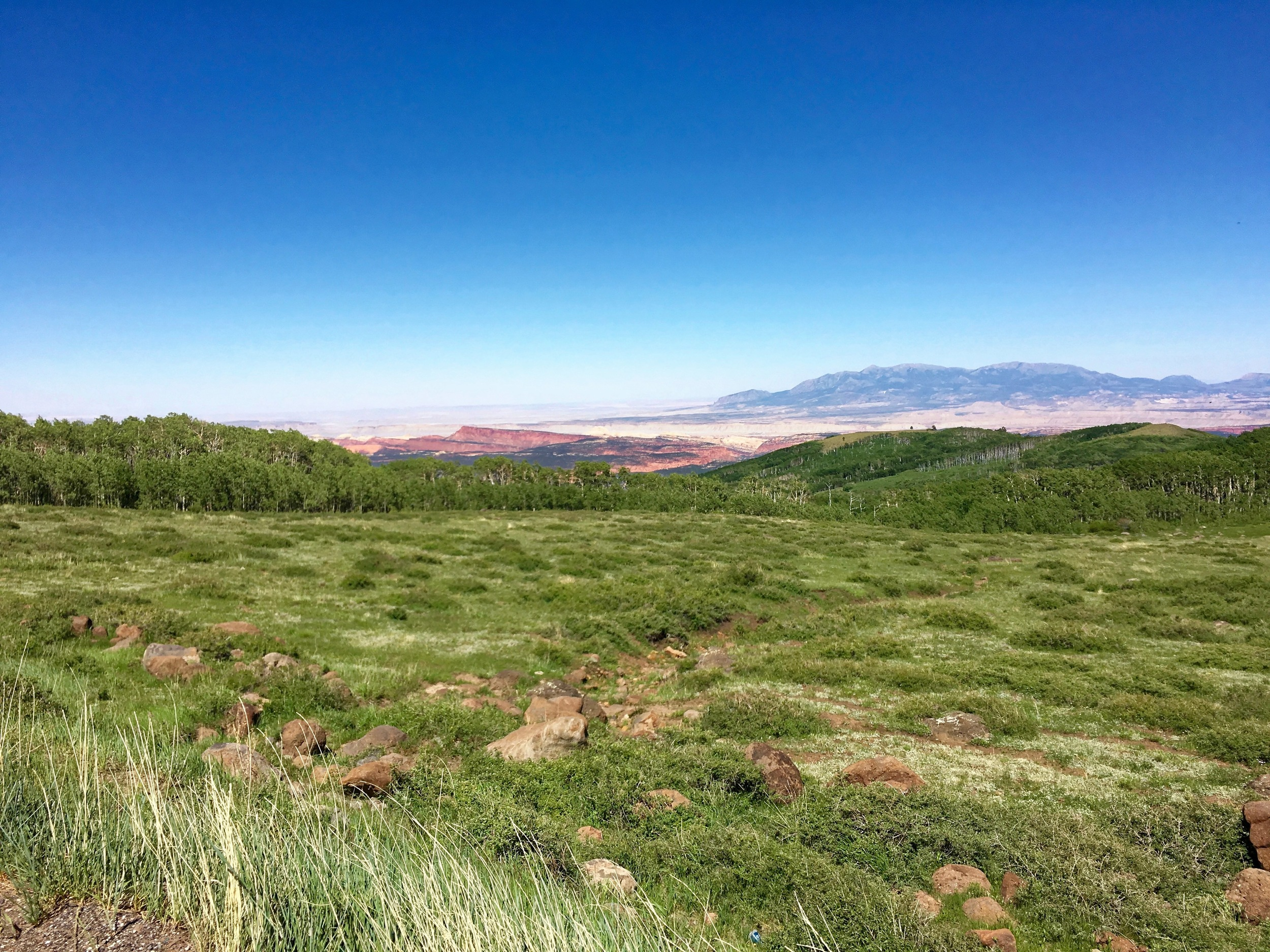 On the way down Boulder Mountain. In the distance center right are the Henry Mountains. They are notable because they were the last range in the US to be mapped (in the 1950's) and they still support wild buffalo herds - the only remaining wild herds in the US.