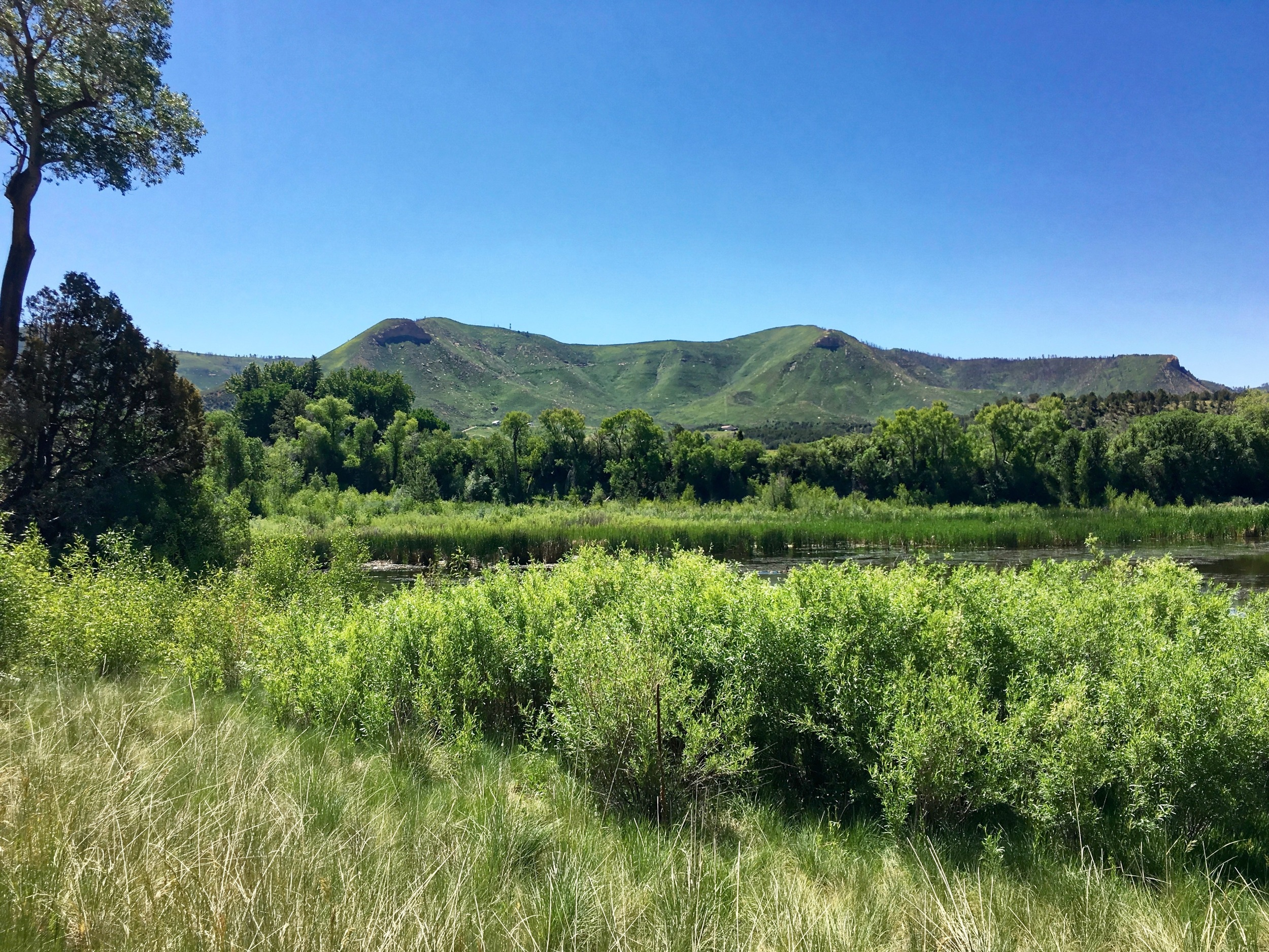 The view near the famous James Ranch, where restorative agriculture is practiced by 3 generations of the James family