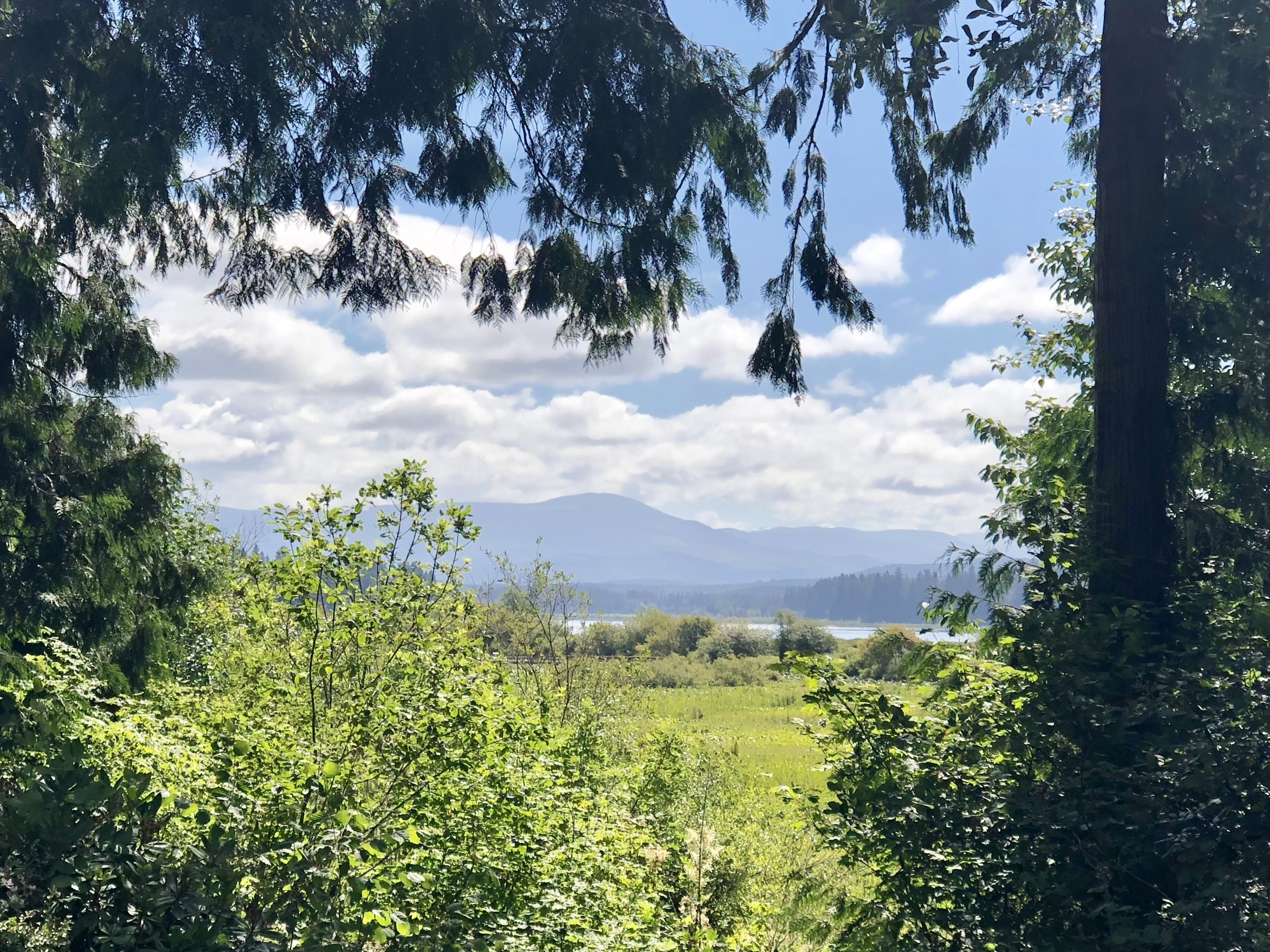 The view to the north from the Mt. St Helen's visitor station about 75 miles north of Portland.