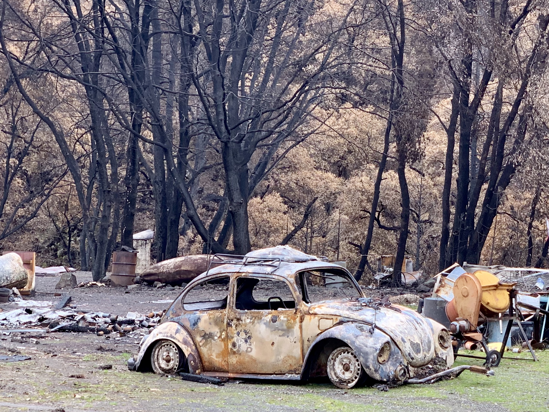 "A climate stressed place - I took this shot in last month near Redding, CA. It's from the Delta Fire, which took place several weeks after the CARR Fire was contained. Locals refer to it as ""the forgotten fire""."