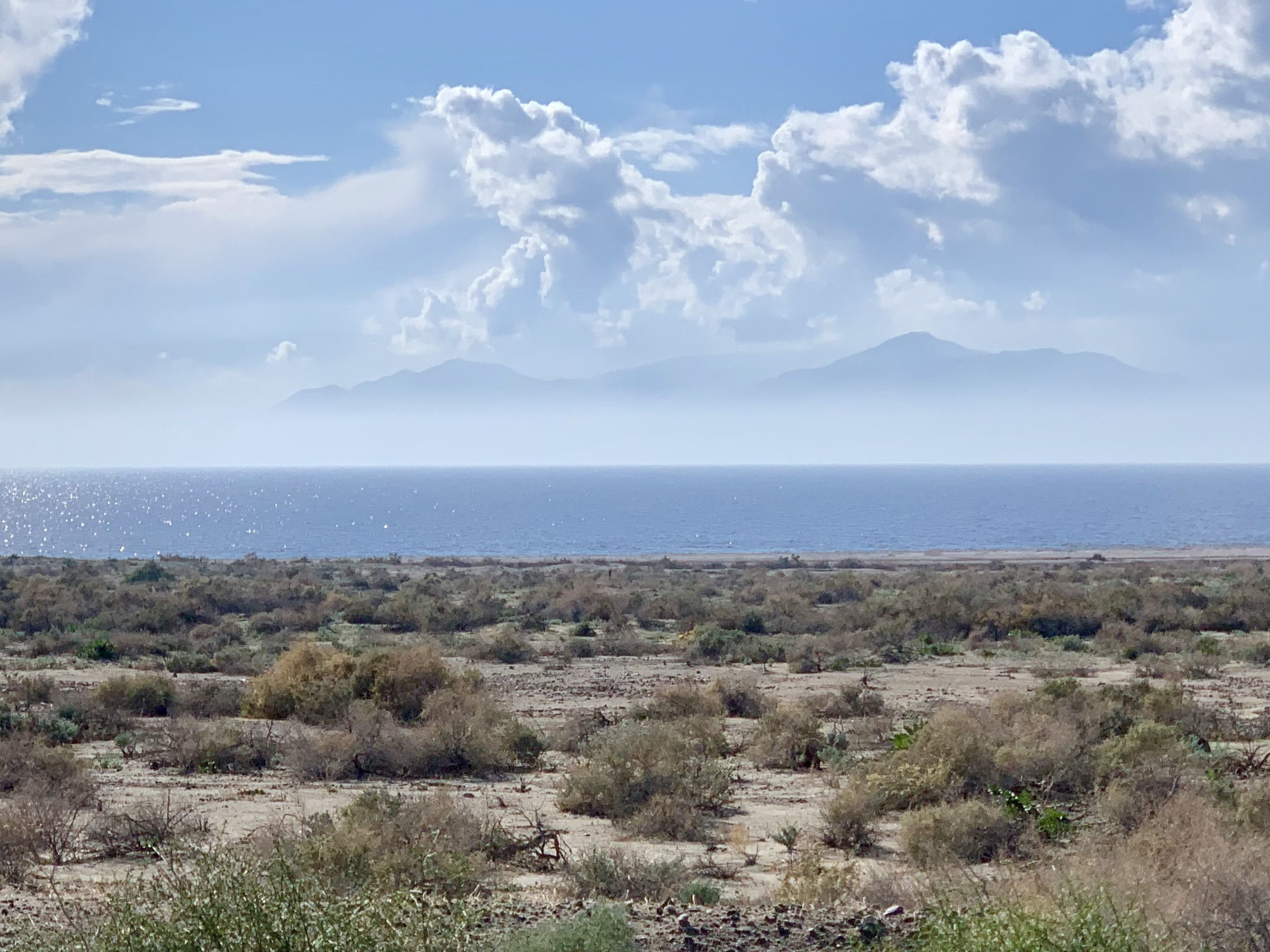 The northern and eastern shore of the Salton Sea is remarkably empty. The first 20 miles of the coast from the north shore are protected by at least three county parks. I was surprised and delighted to see this.