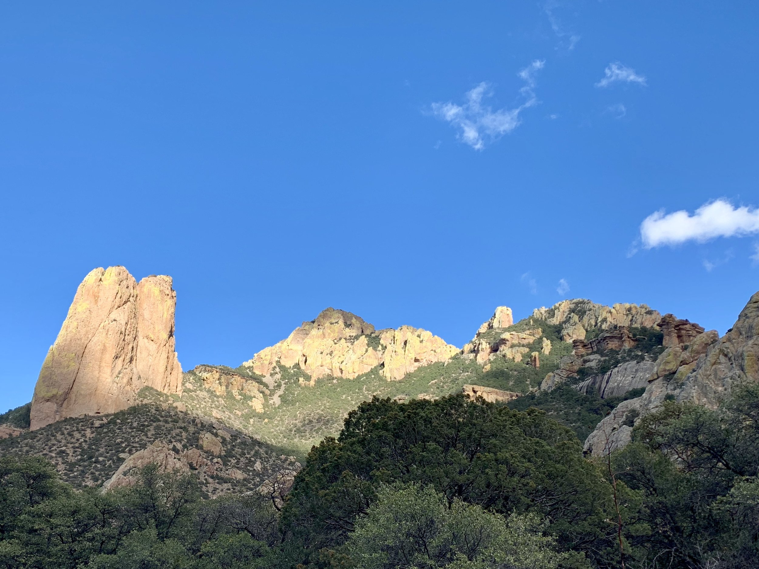 The view from cave Creek Canyon near Portal west of Rodeo.