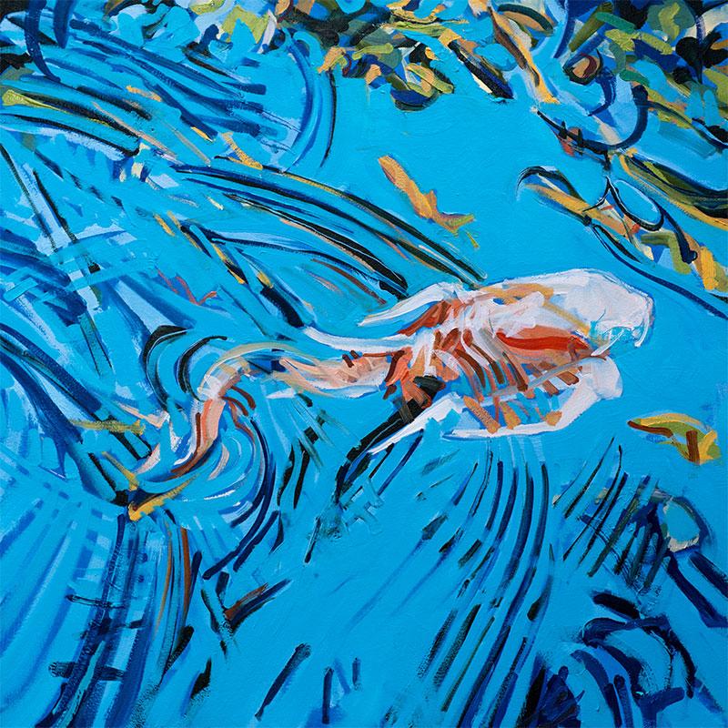 Swimming Koi