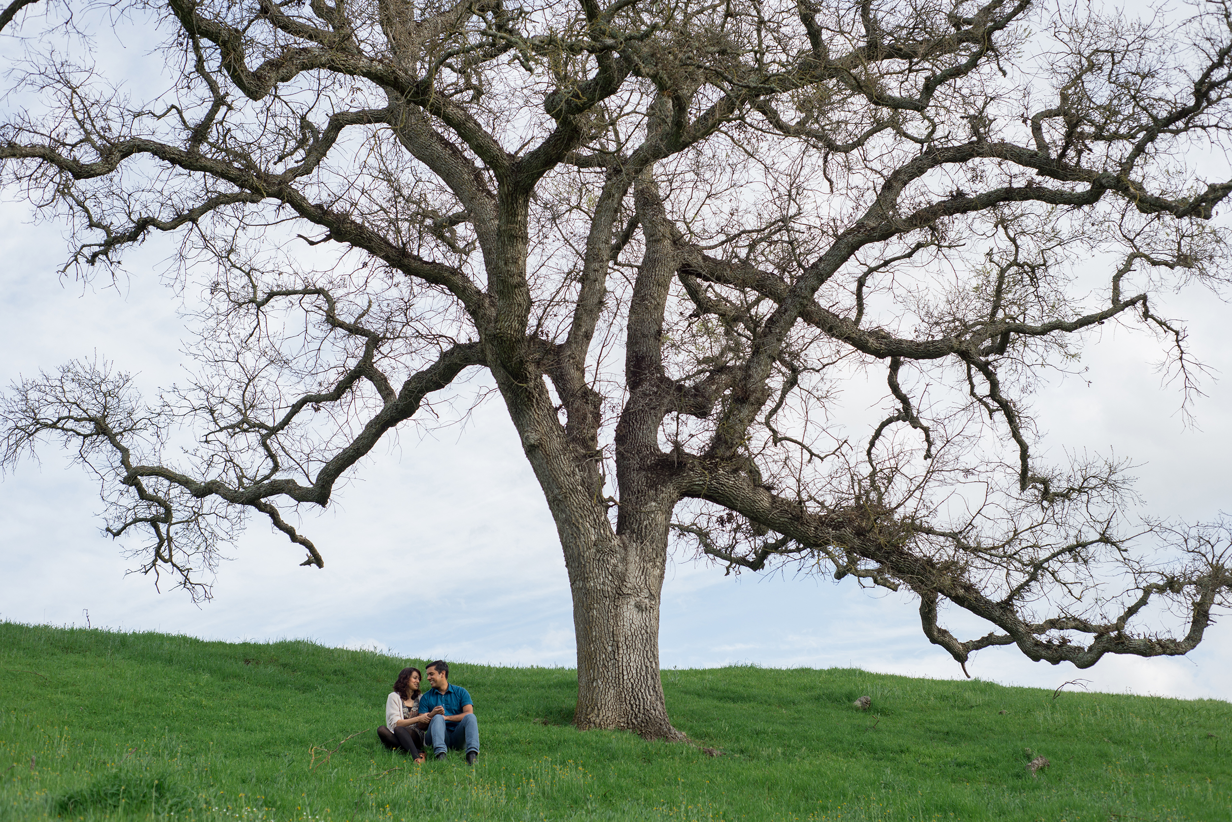 12-sunol-regional-wilderness-springtime-engagement-session.jpg