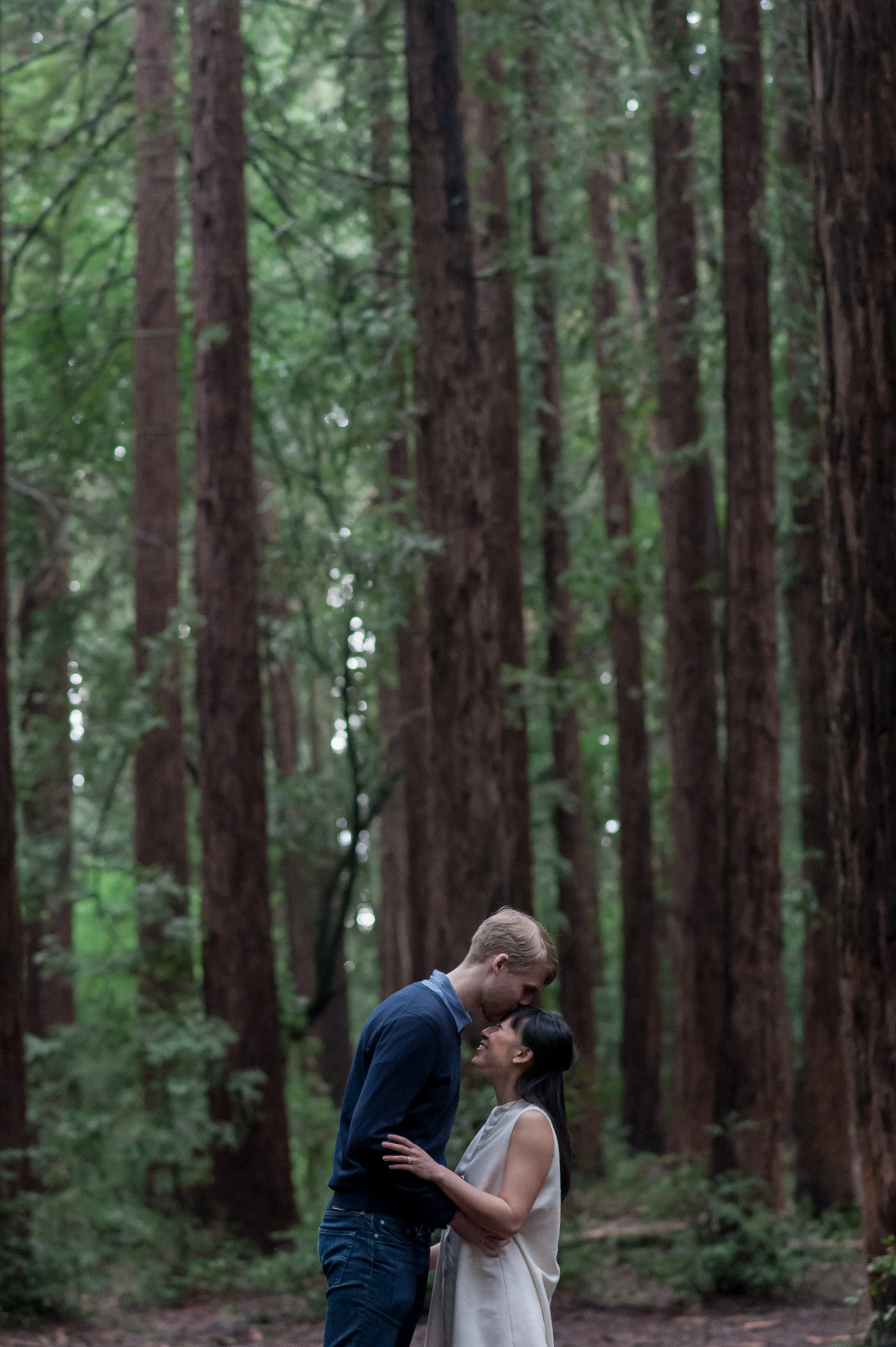 oakland-museum-redwood-forest-engagement-vc15.jpg
