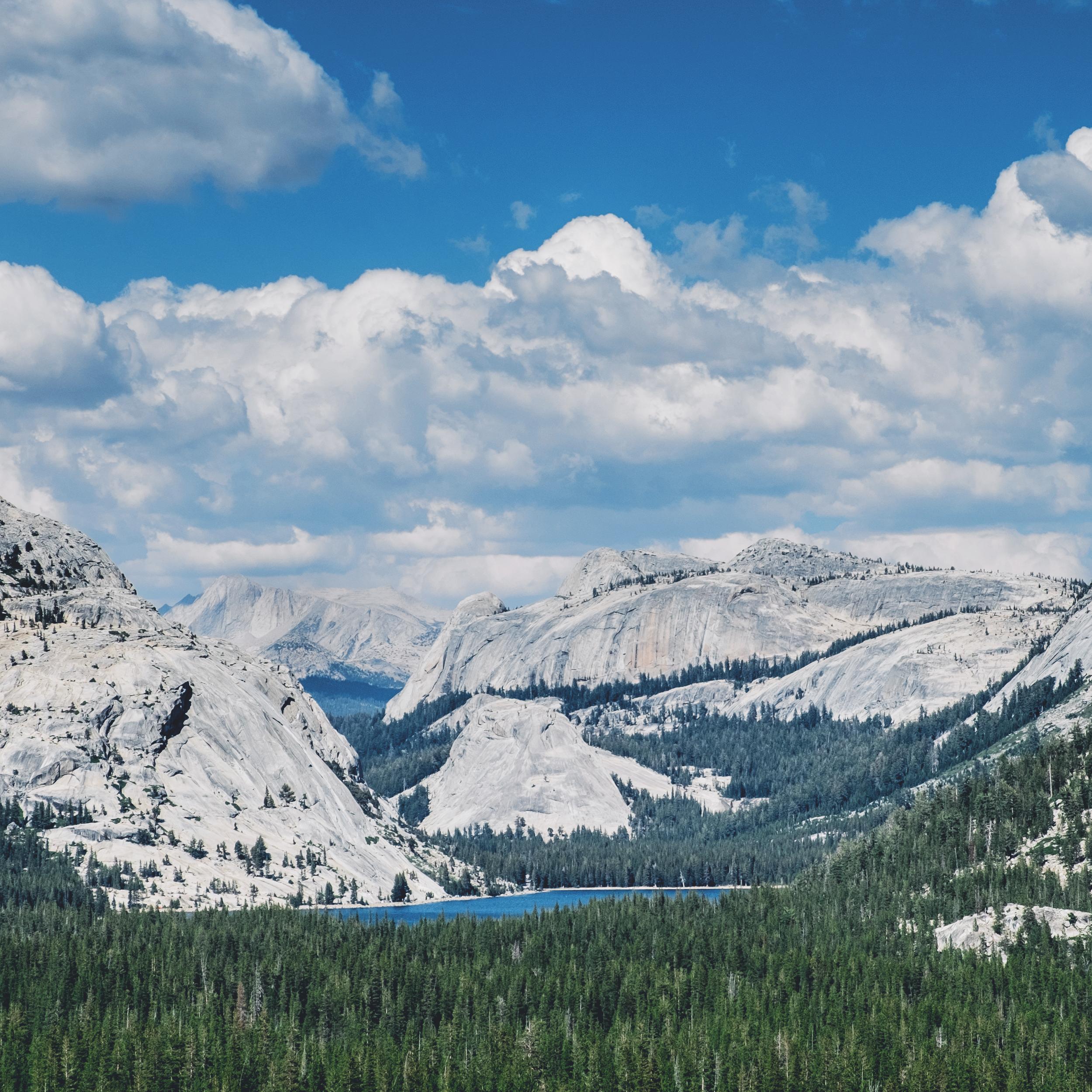 Tenaya Lake, Yosemite National Park (From  Anna and Erik's Yosemite wedding .)