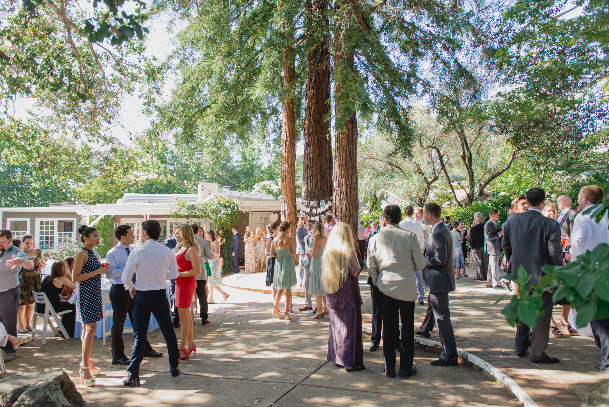 21-down-to-earth-marin-art-garden-center-wedding-vivianchen.jpg