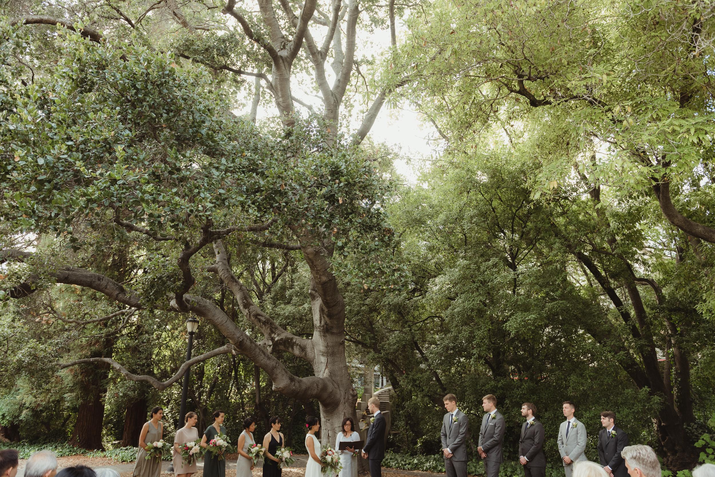 faculty-club-berkeley-wedding-photographer-vc033.jpg