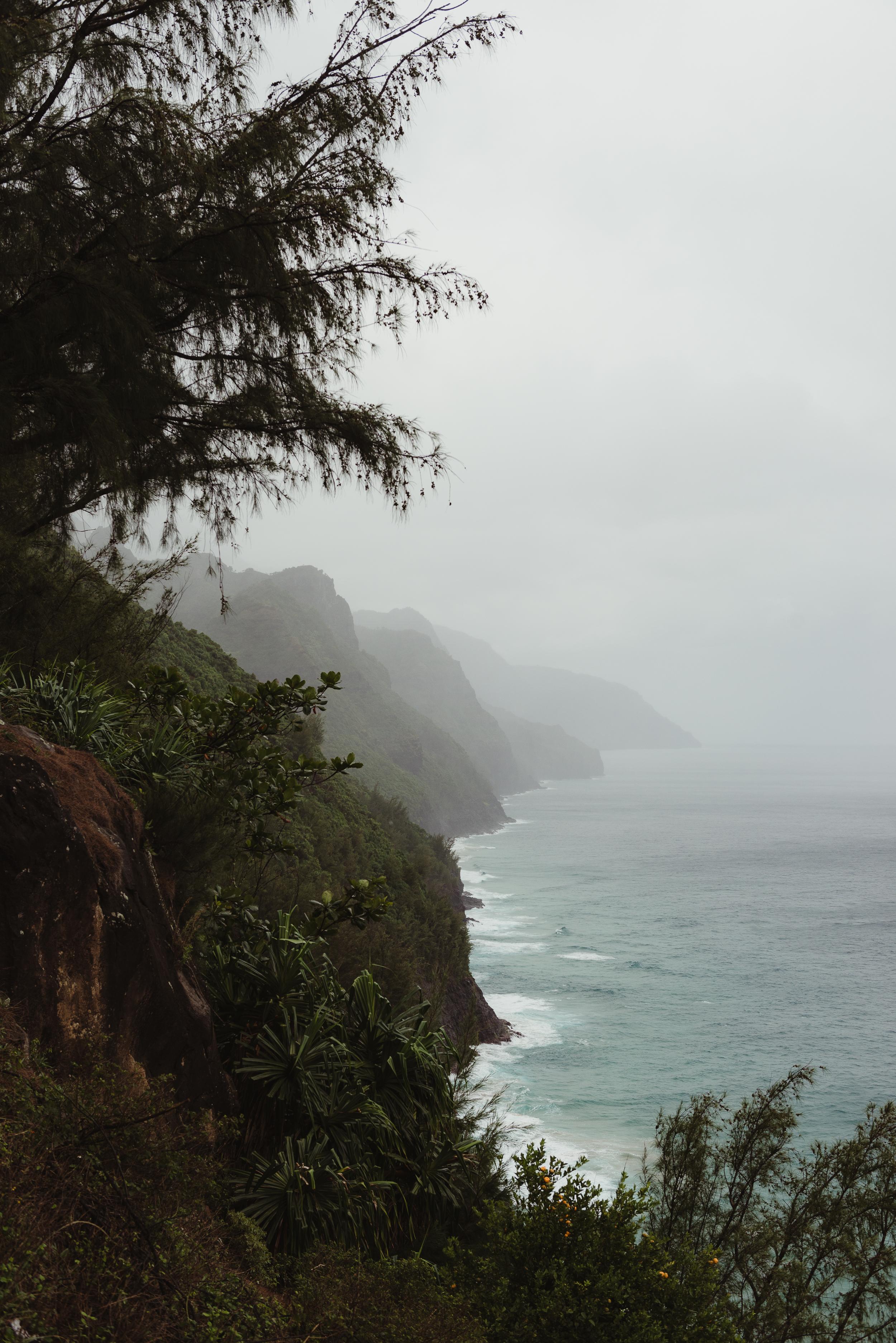 65-kauai-destination-wedding-photographer-vivianchen-0006.jpg