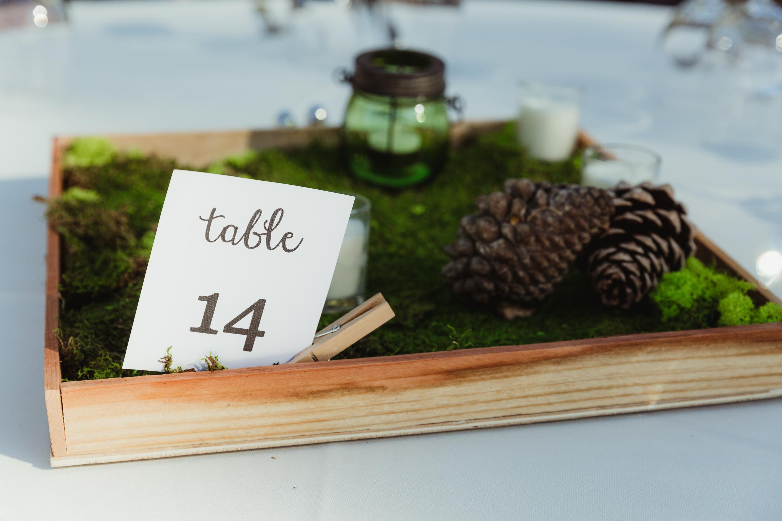 lake-tahoe-destination-wedding-vivianchen-36.jpg