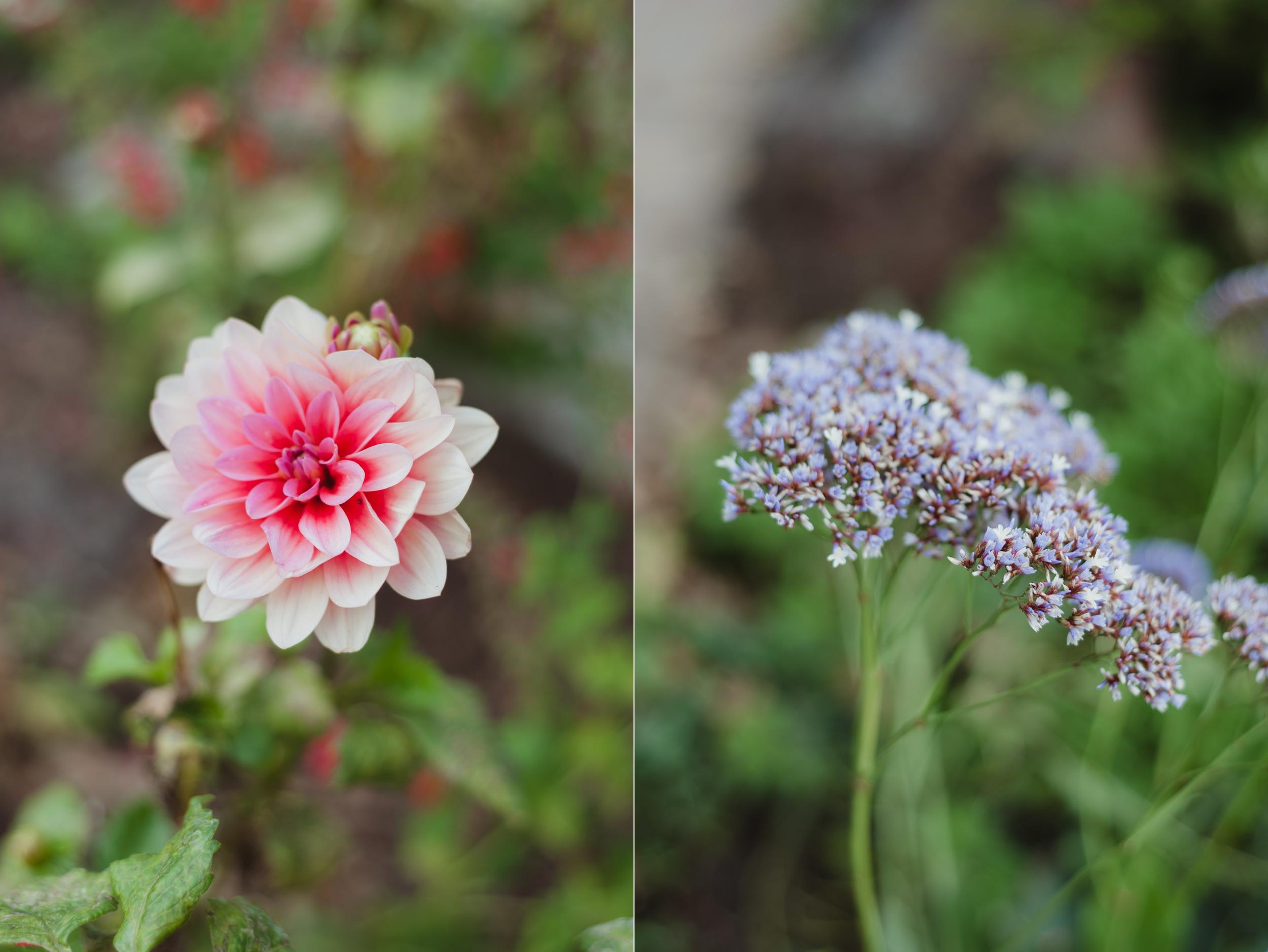 heather-farms-garden-wedding-vivianchen08.jpg