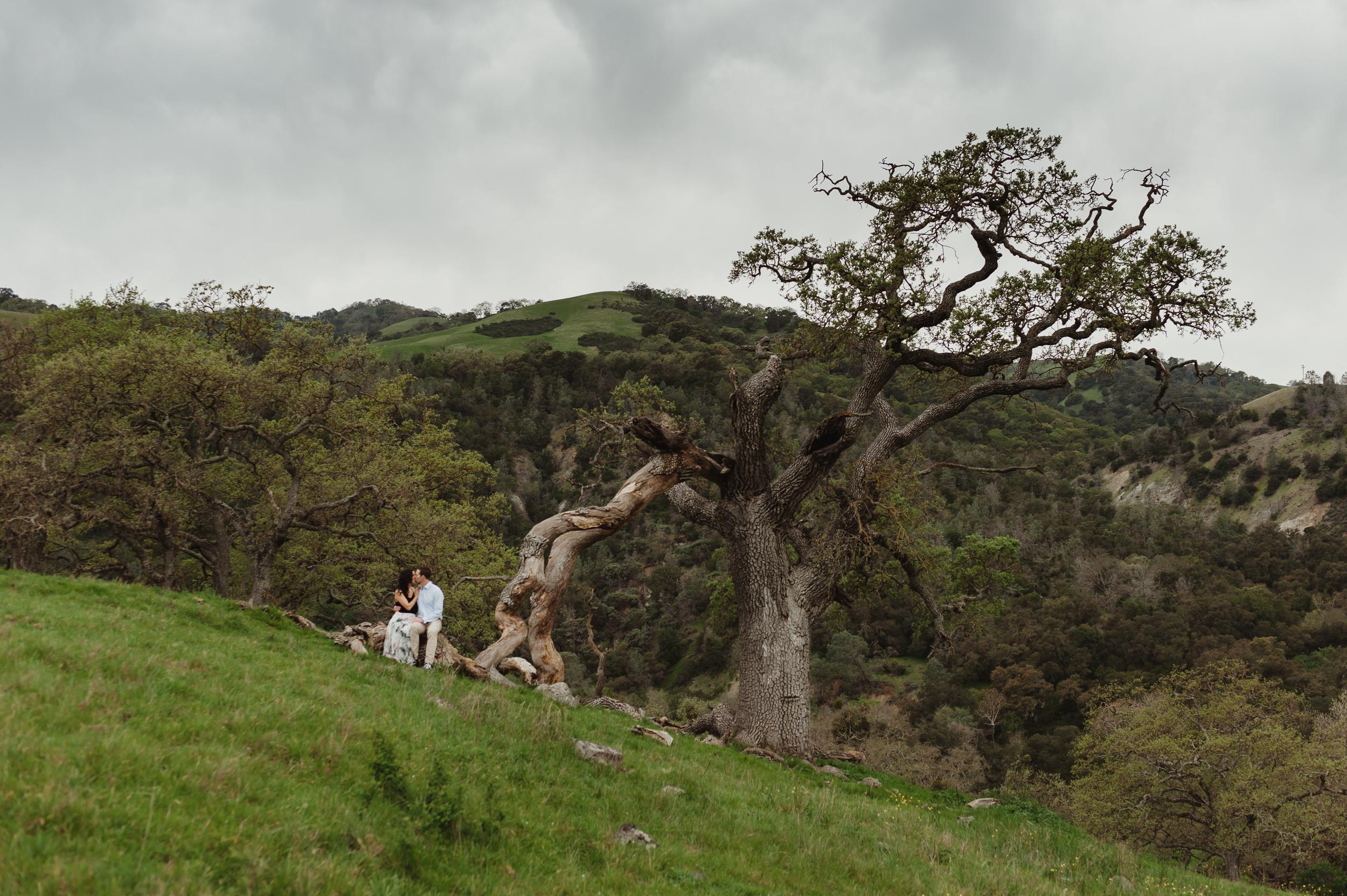 06-sunol-regional-wilderness-engagement-vivianchen-0074.jpg