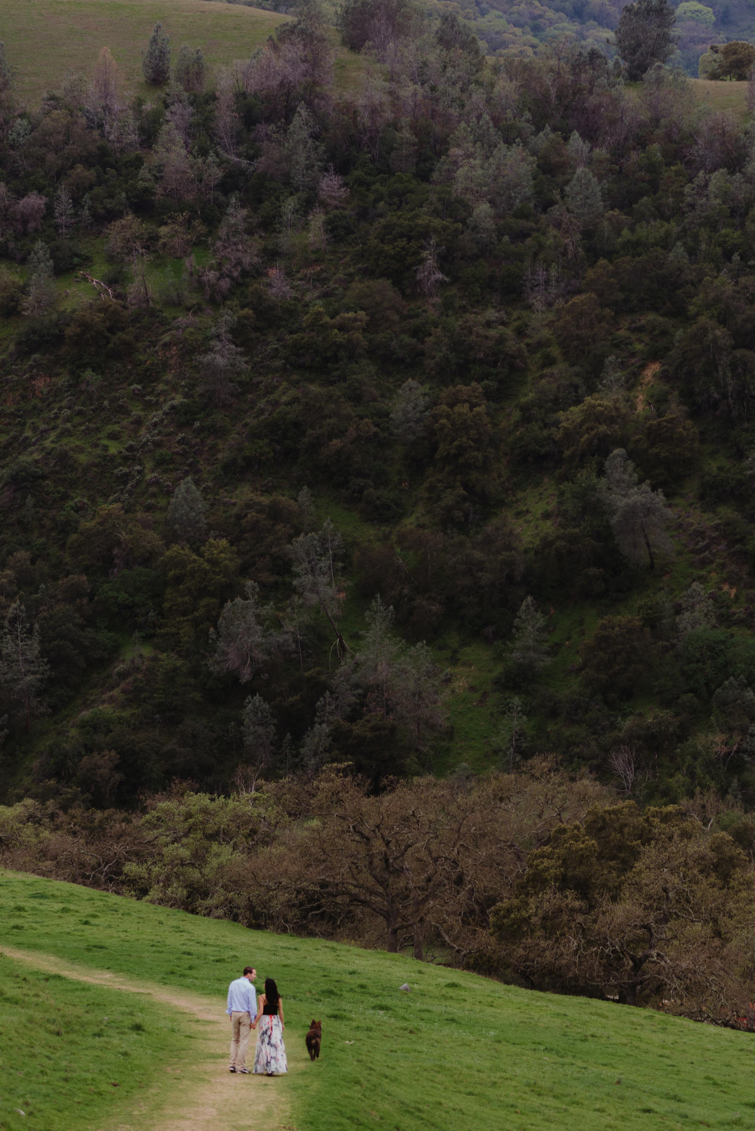 24-sunol-regional-wilderness-engagement-vivianchen-0166.jpg