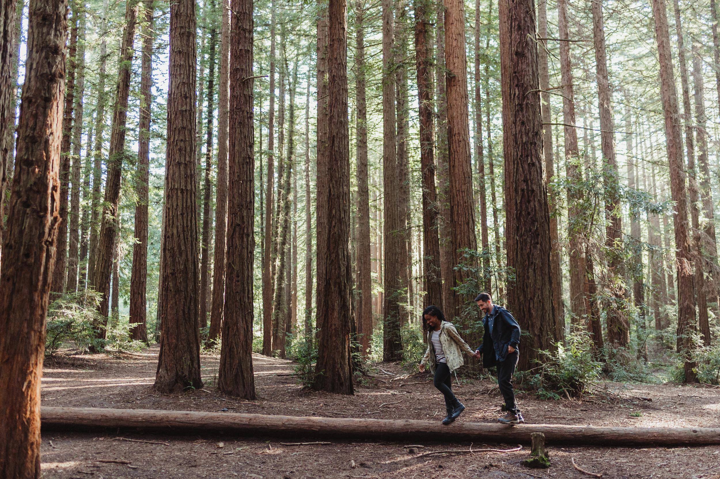 02-redwood-regional-park-oakland-engagement-vivianchen-015.jpg