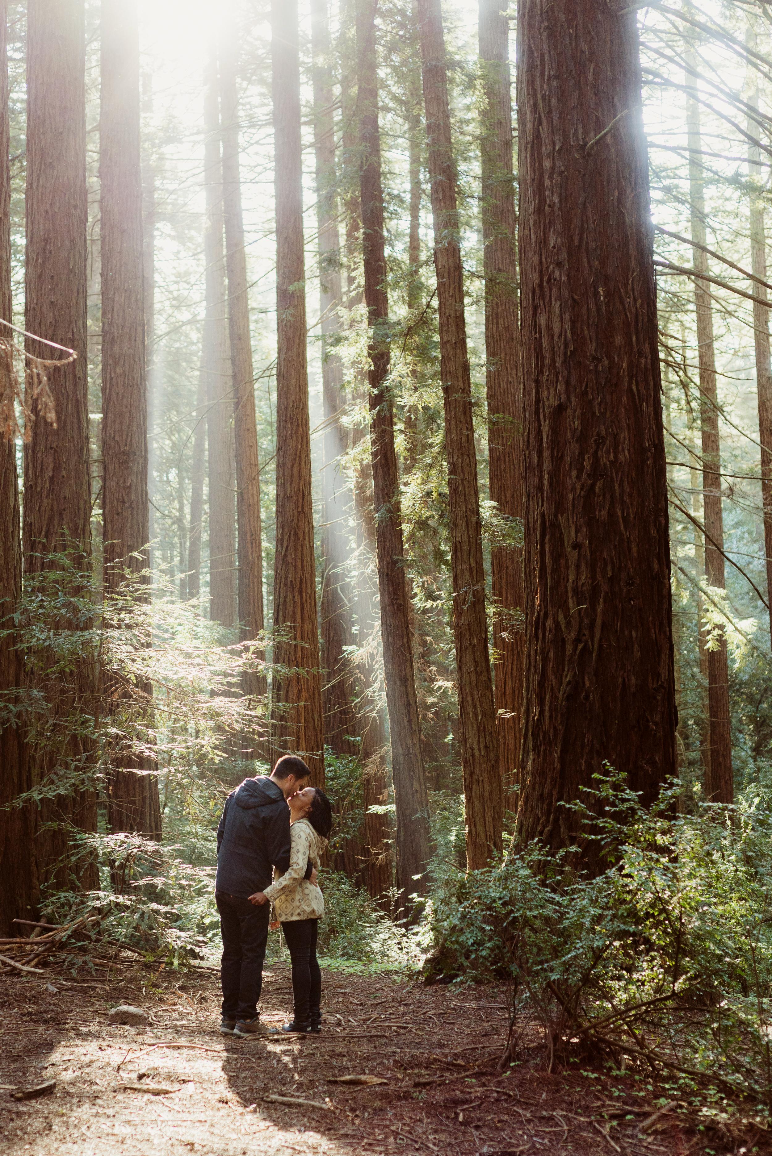 01-redwood-regional-park-oakland-engagement-vivianchen-003.jpg