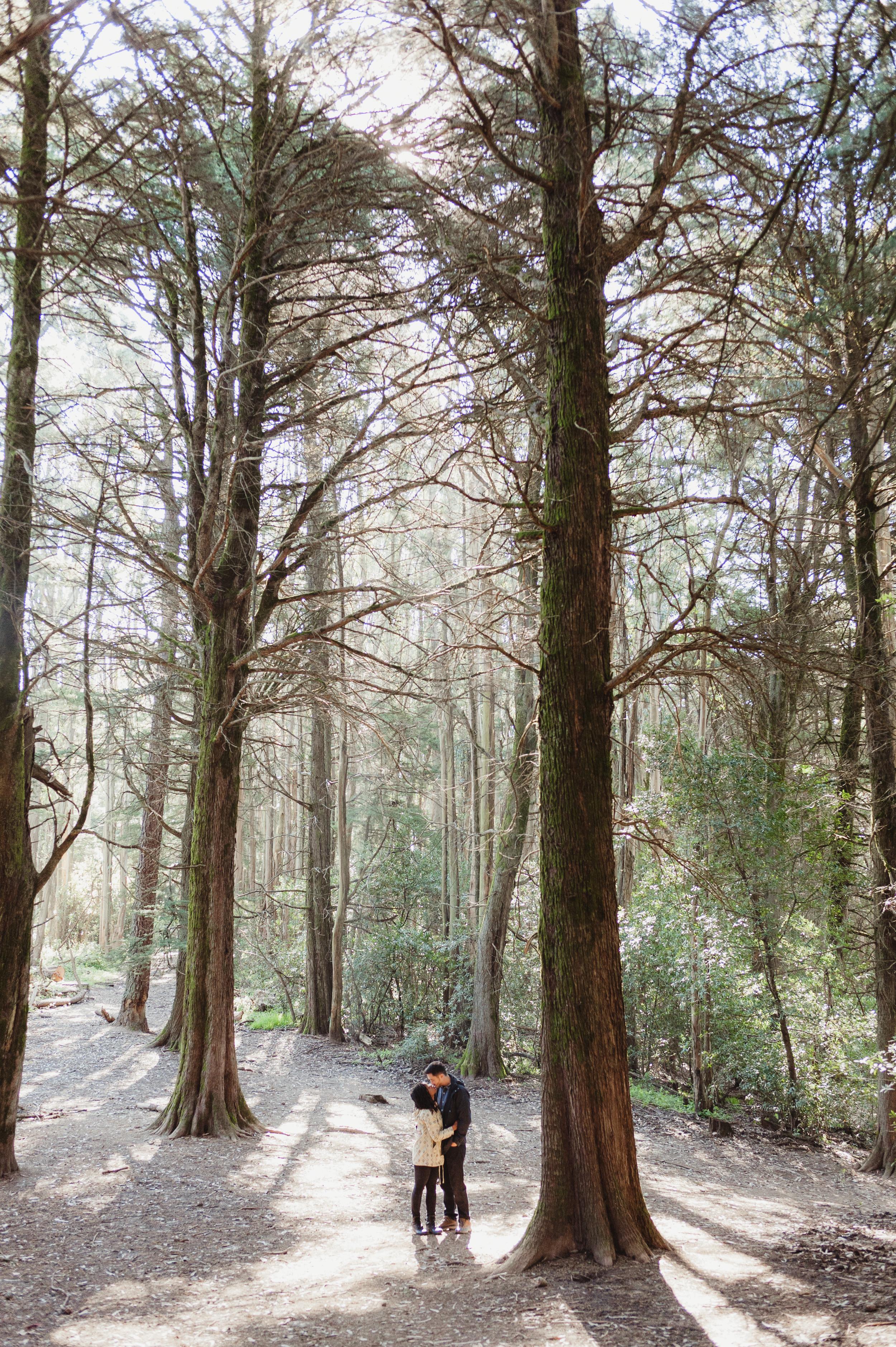 15-redwood-regional-park-oakland-engagement-vivianchen-091.jpg