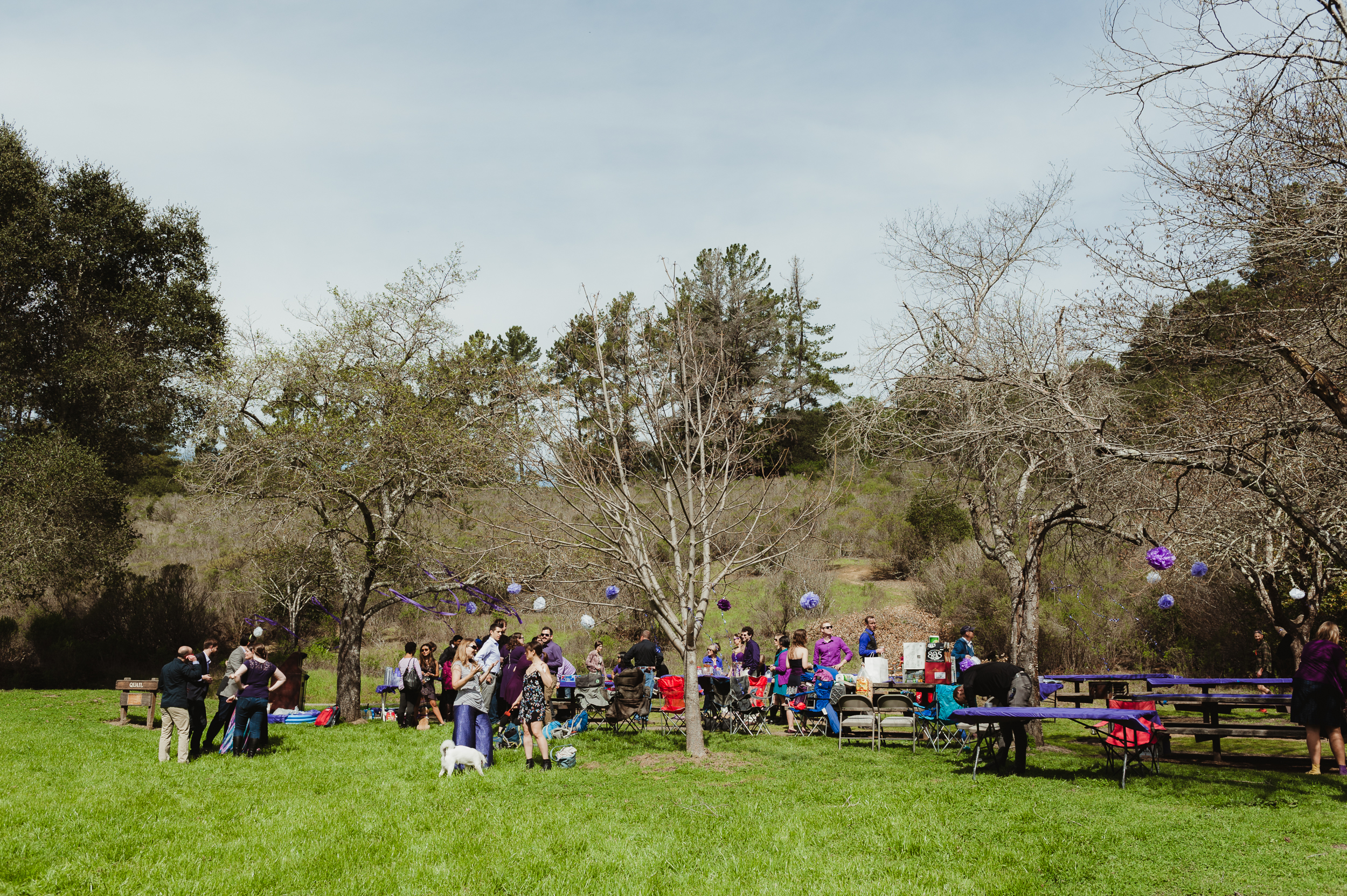 45-oakland-redwood-regional-park-wedding-vivianchen-489.jpg