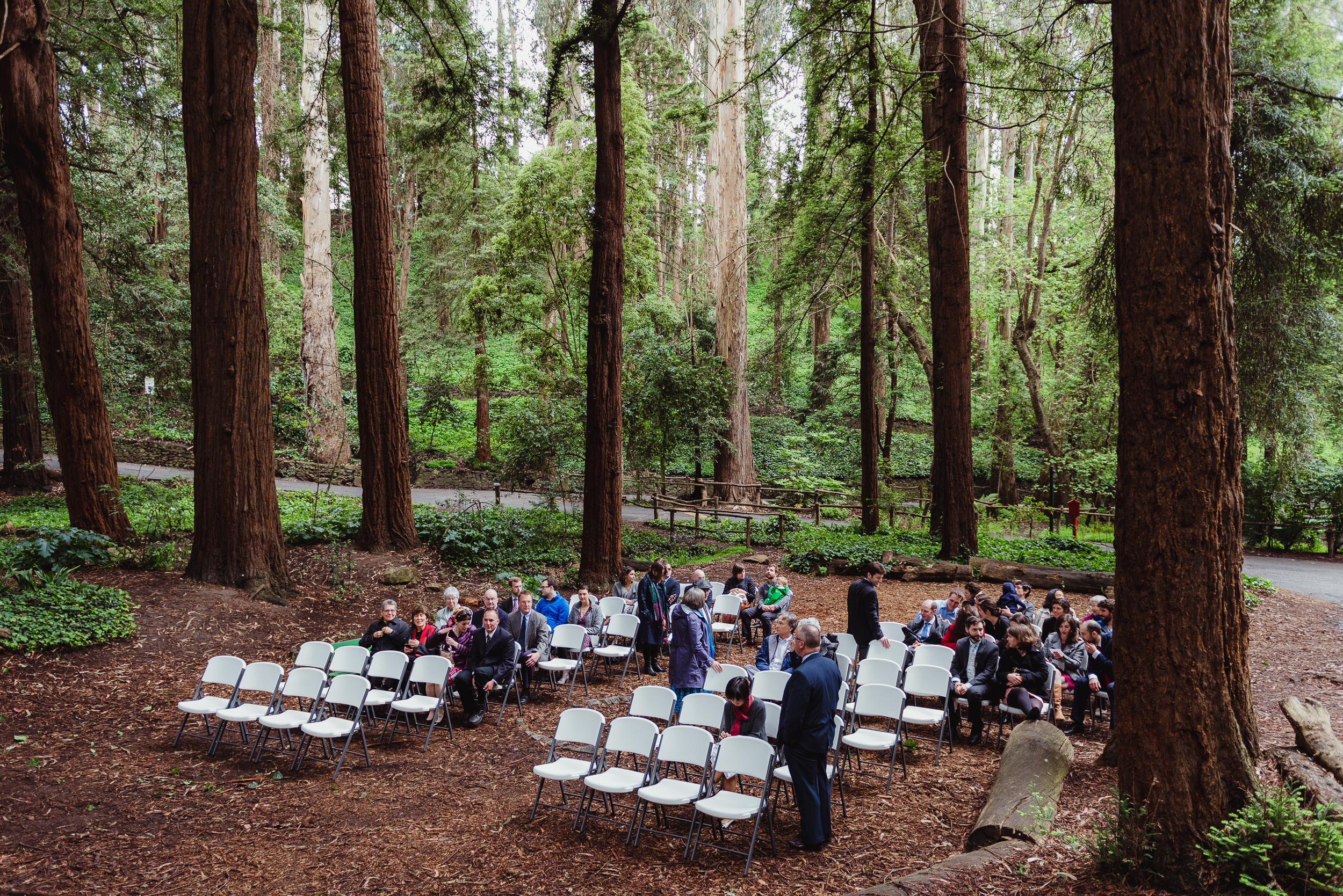 20vintage-san-francisco-stern-grove-wedding-vivianchen-0117.jpg
