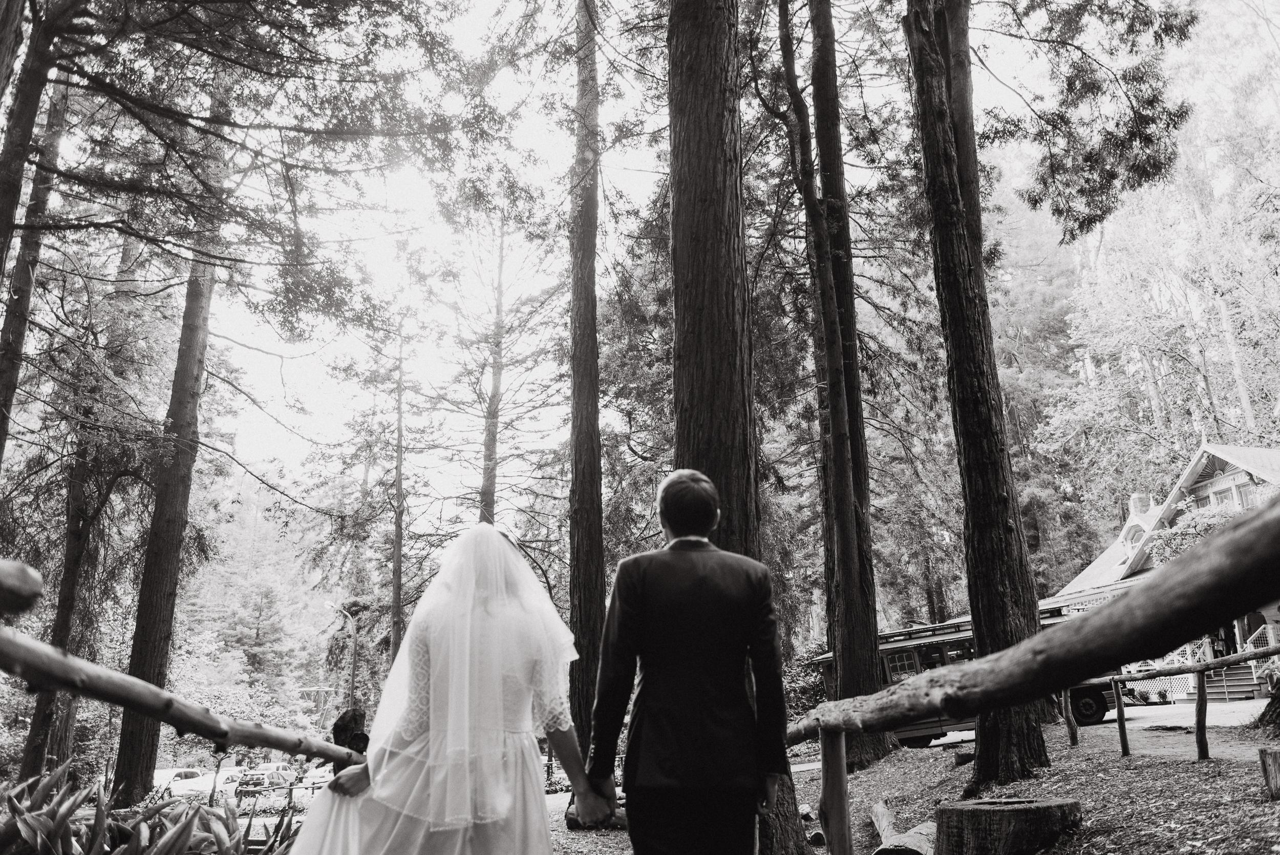 43vintage-san-francisco-stern-grove-wedding-vivianchen-0306.jpg