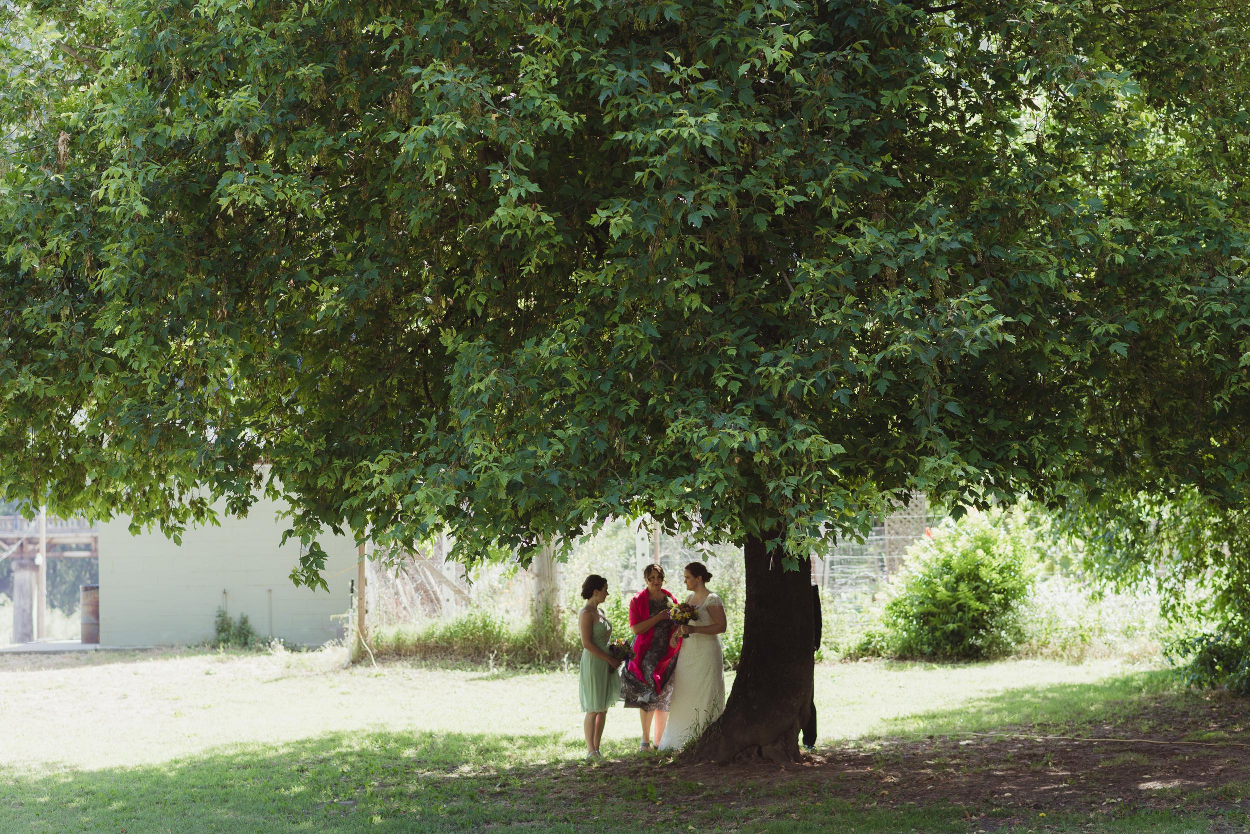 026-highland-dell-lodge-russian-river-wedding-vivianchen-143.jpg