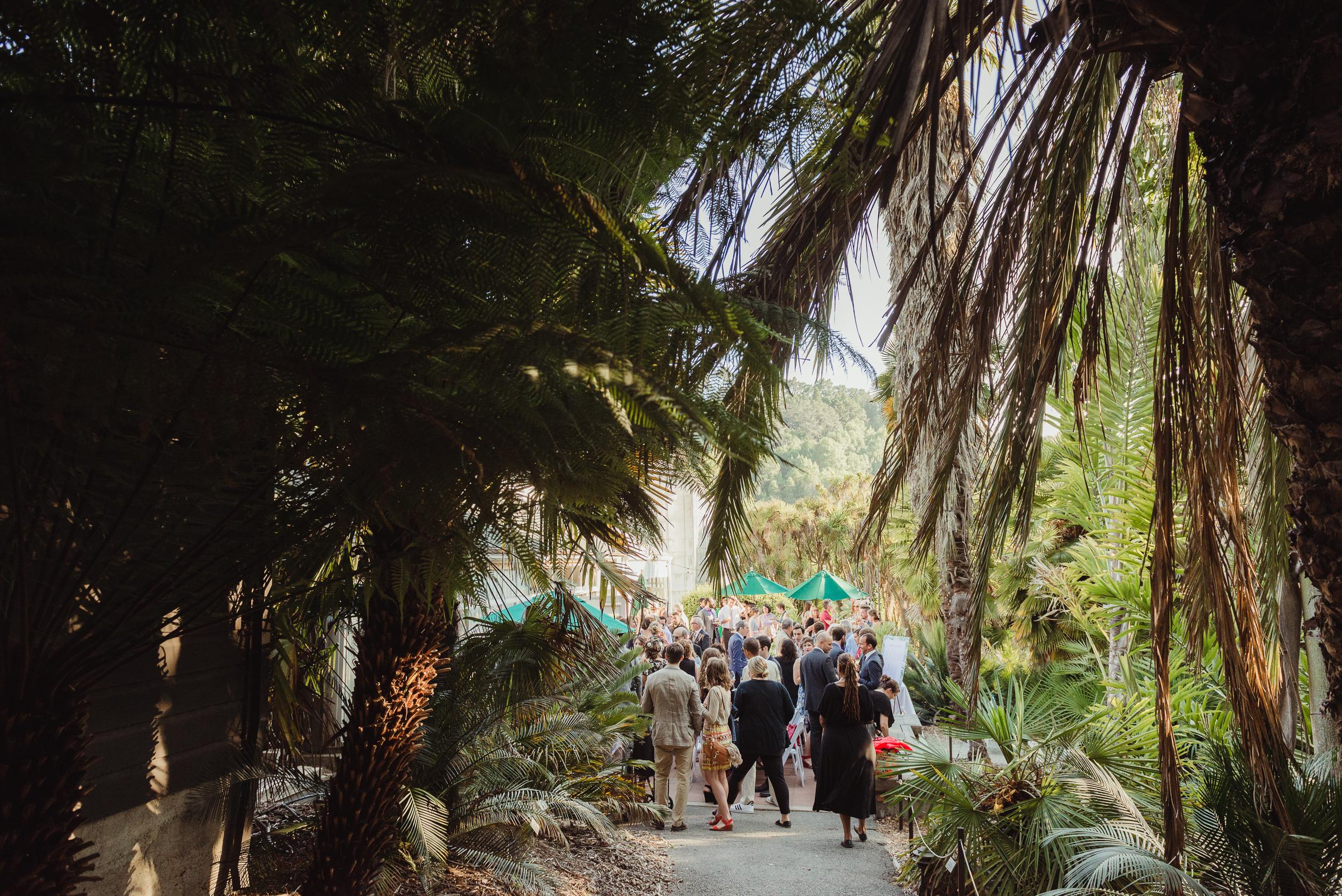 lgbtq-uc-berkeley-botanical-garden-wedding-vivianchen-057.jpg