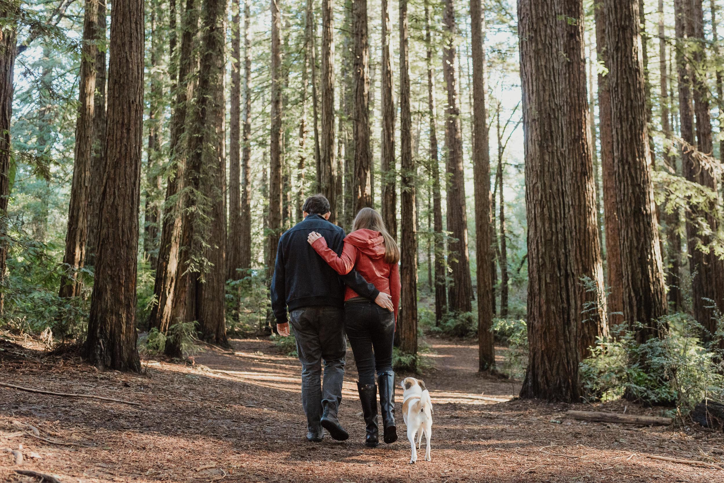 oakland-joaquin-miller-park-redwood-grove-engagement-session-vivianchen-015.jpg