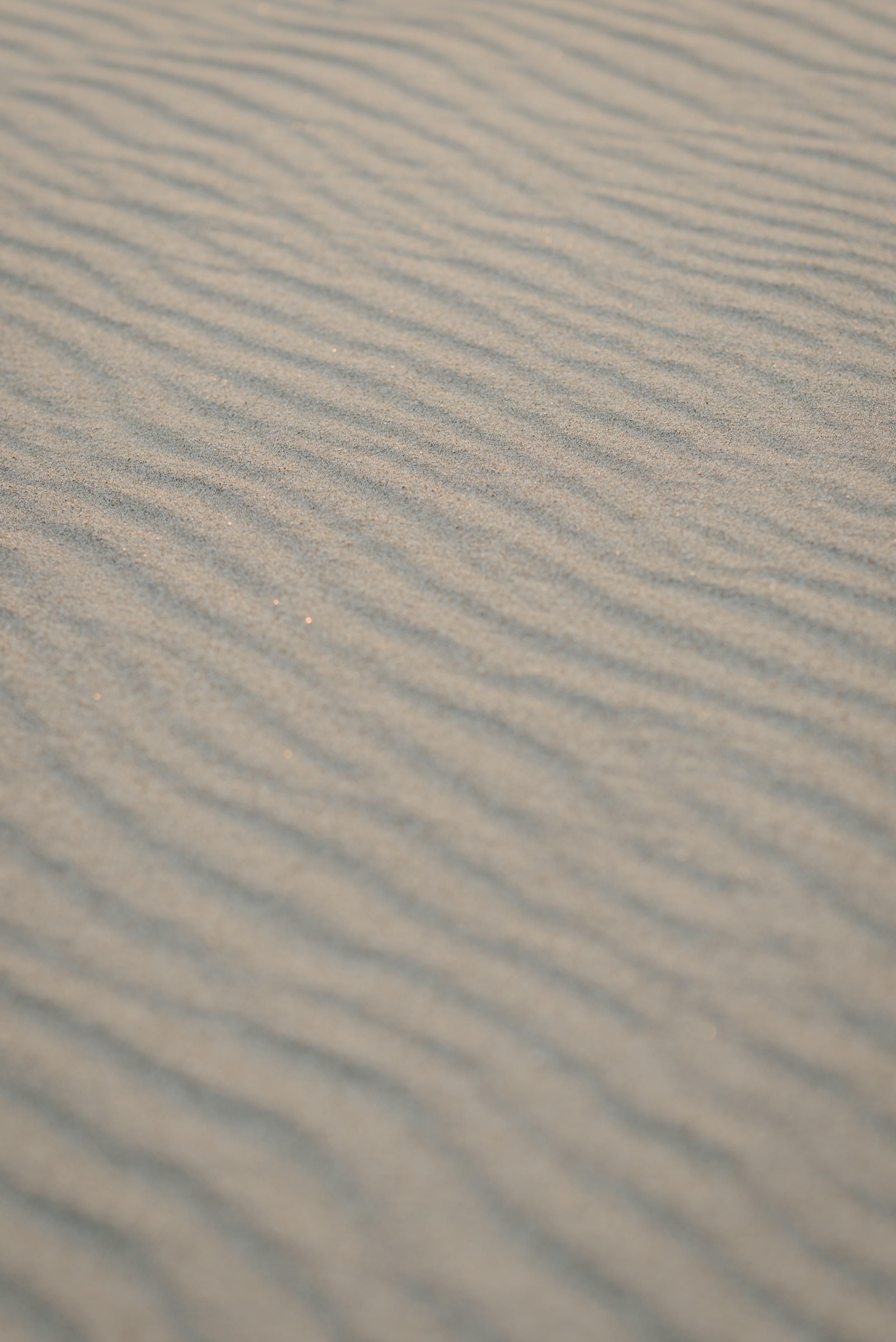 26-point-reyes-national-seashore-engagement-shoot-vivianchen-099.jpg