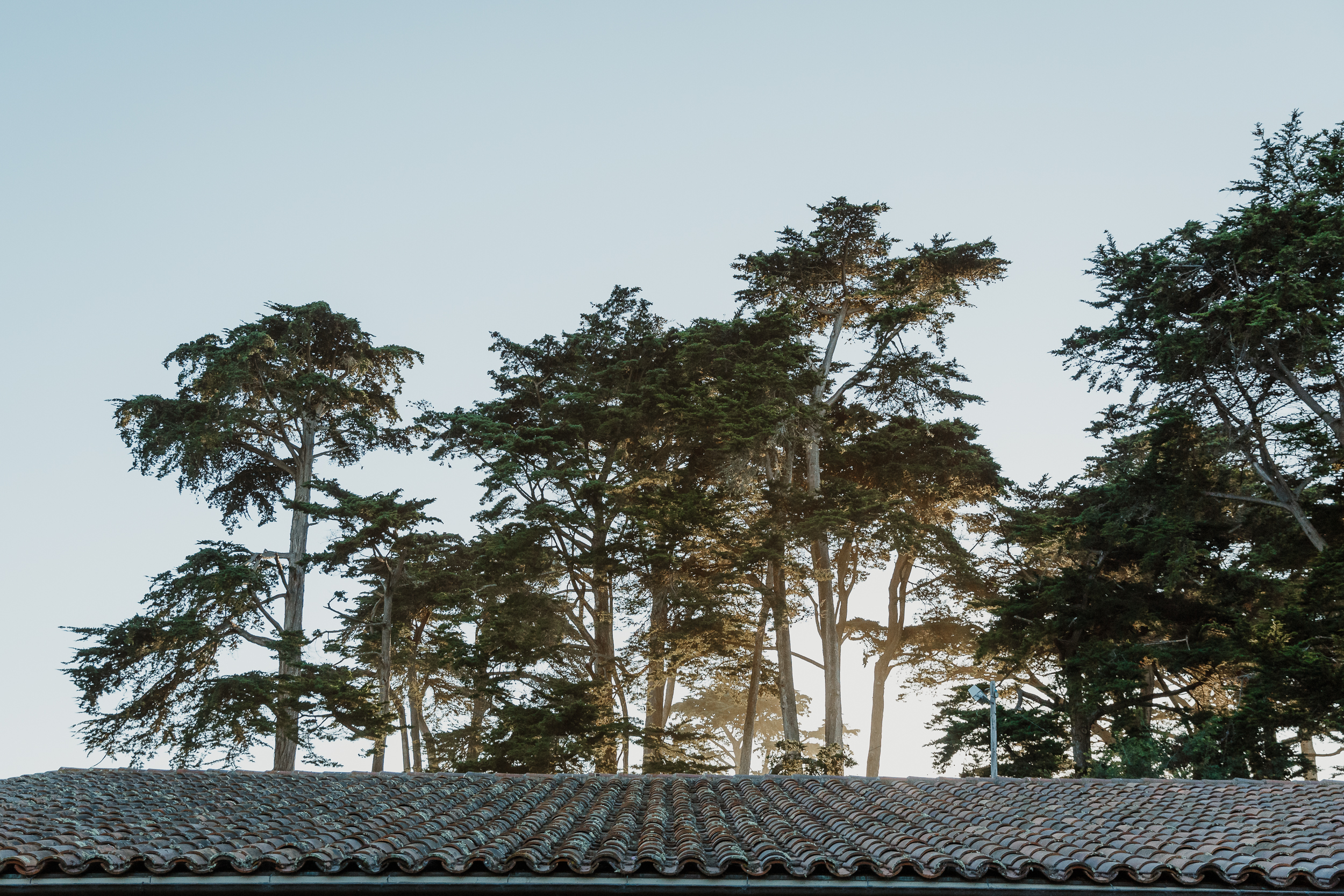 52-traditional-san-francisco-presidio-golden-gate-club-wedding-vivianchen-026.jpg