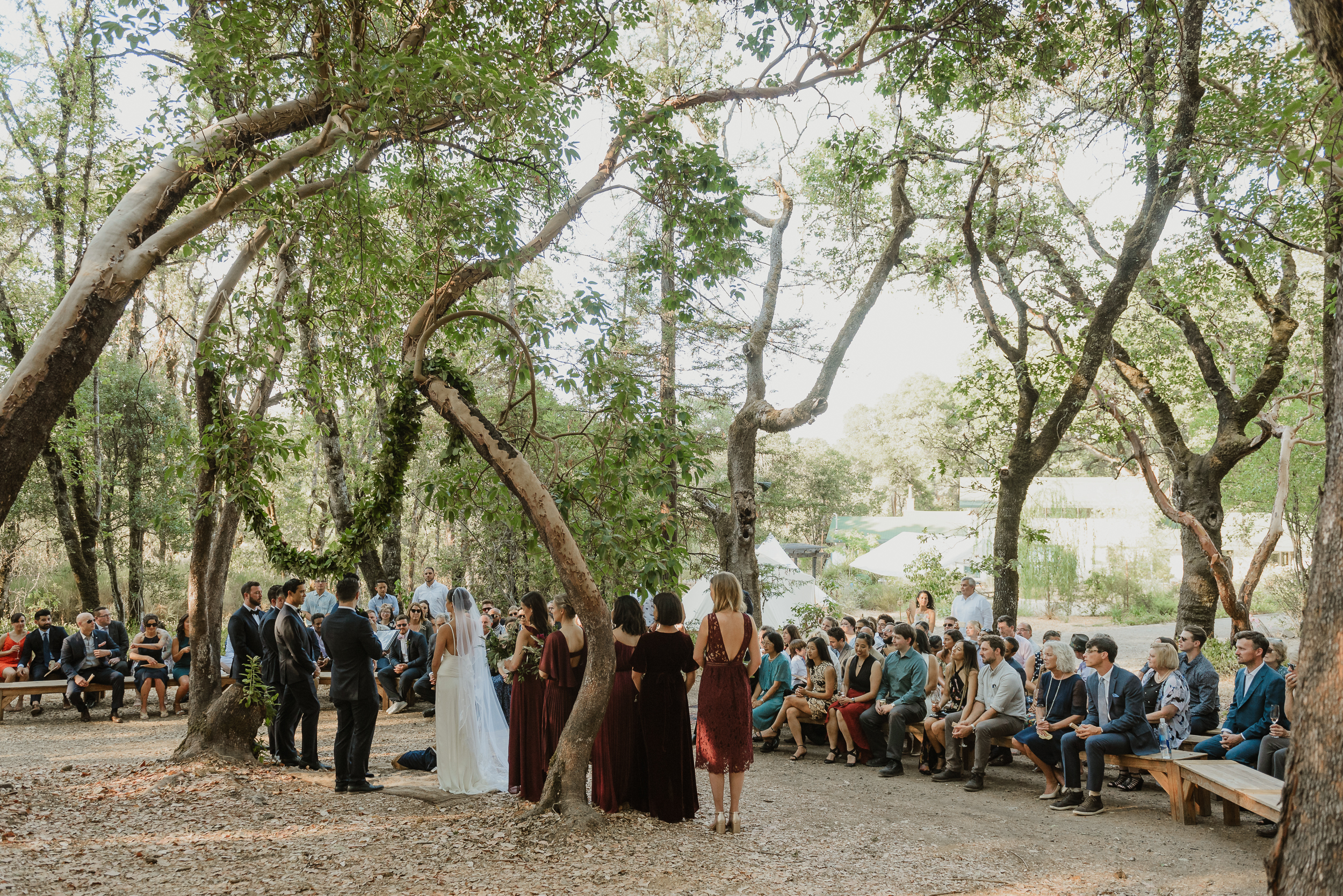 38-ukiah-yokayo-ranch-fall-wedding-vivianchen-238.jpg