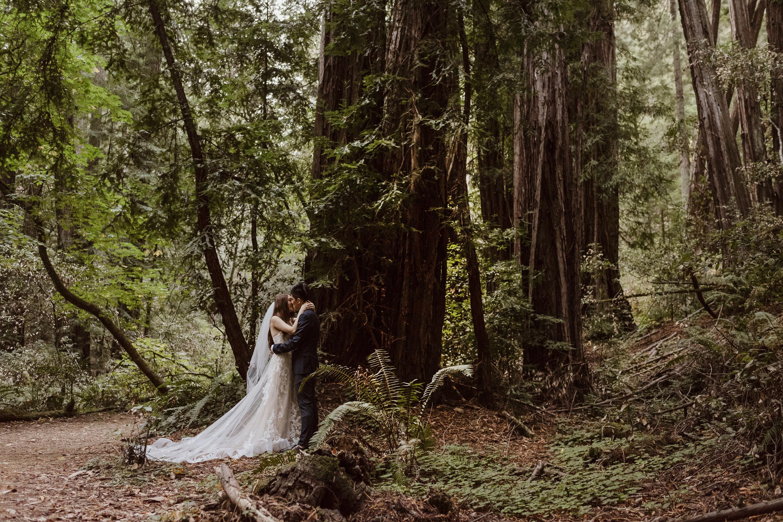 11-muir-woods-wedding-engagement-portrait-session-vivianchen-091.jpg
