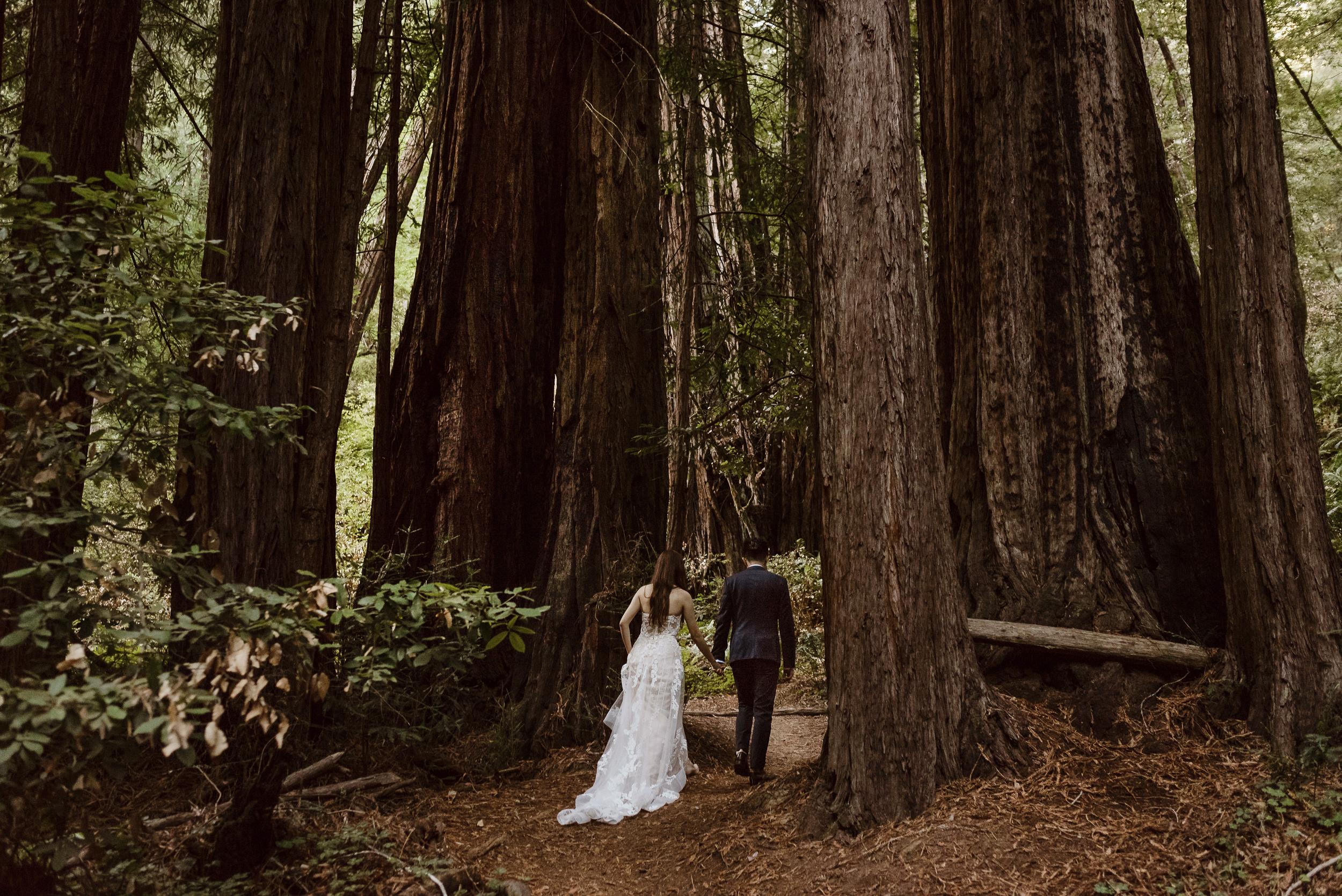 13-muir-woods-wedding-engagement-portrait-session-vivianchen-106.jpg