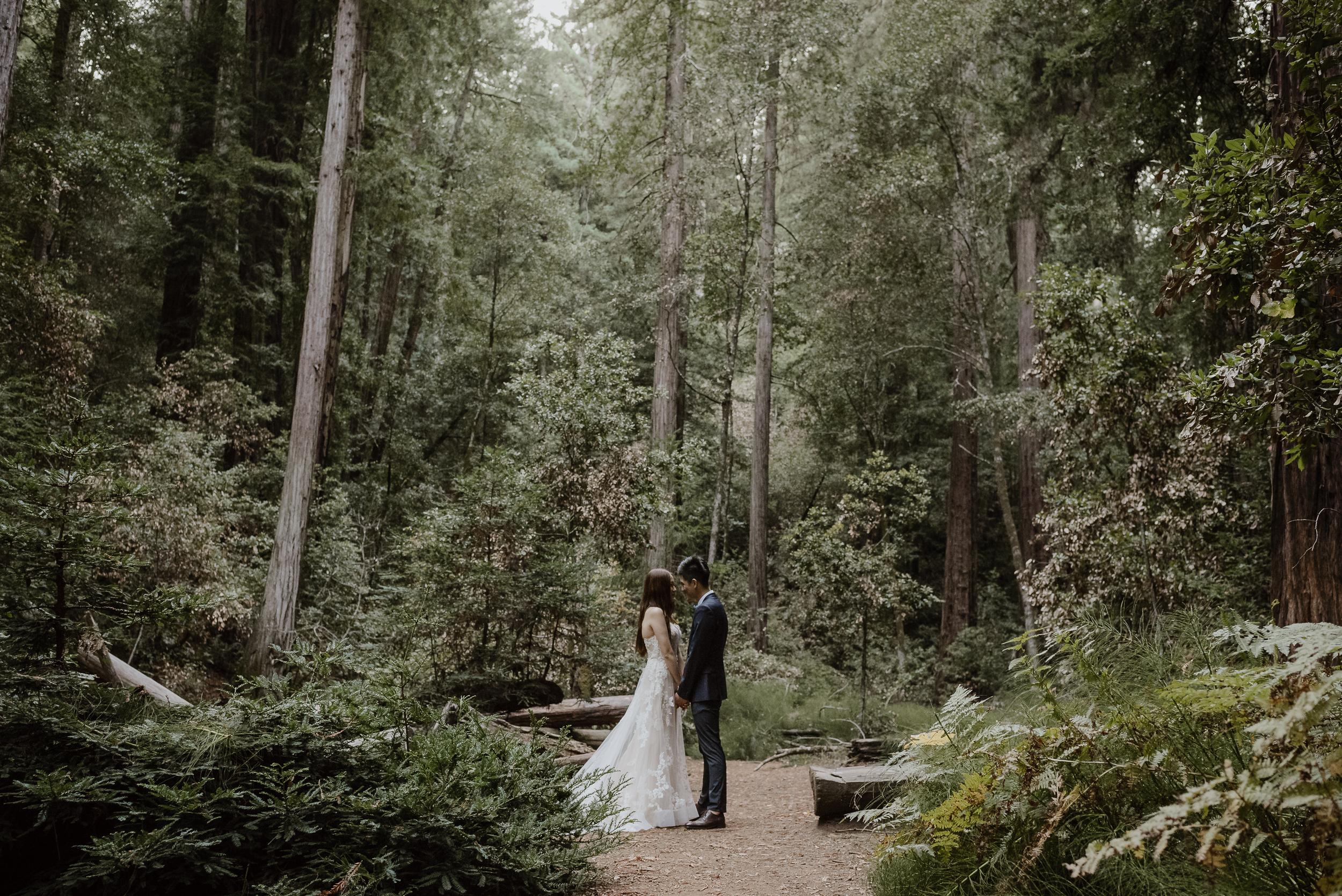 17-muir-woods-wedding-engagement-portrait-session-vivianchen-170.jpg