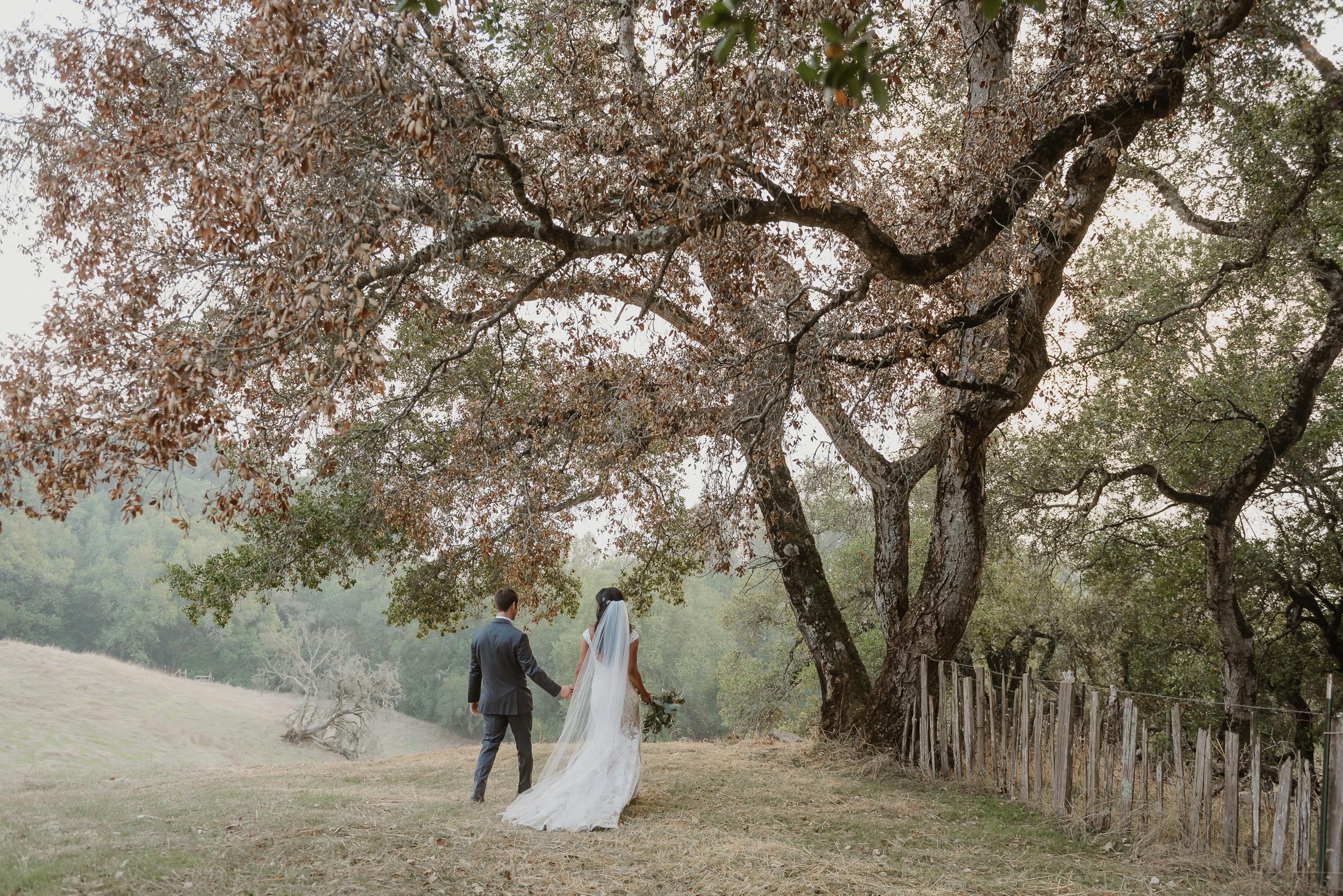 060marin-petaluma-backyard-wedding-vivianchen-453.jpg