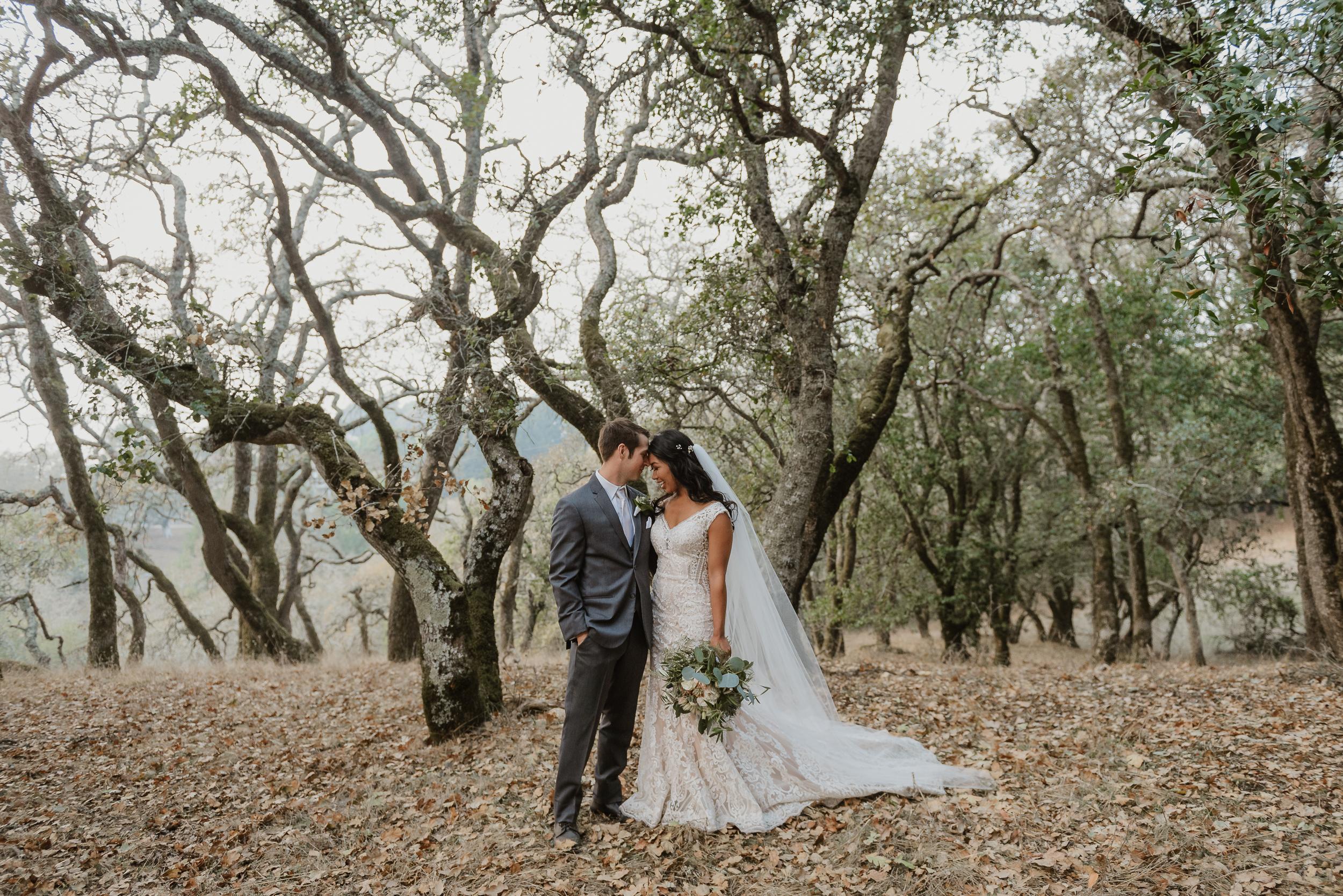 069marin-petaluma-backyard-wedding-vivianchen-477.jpg