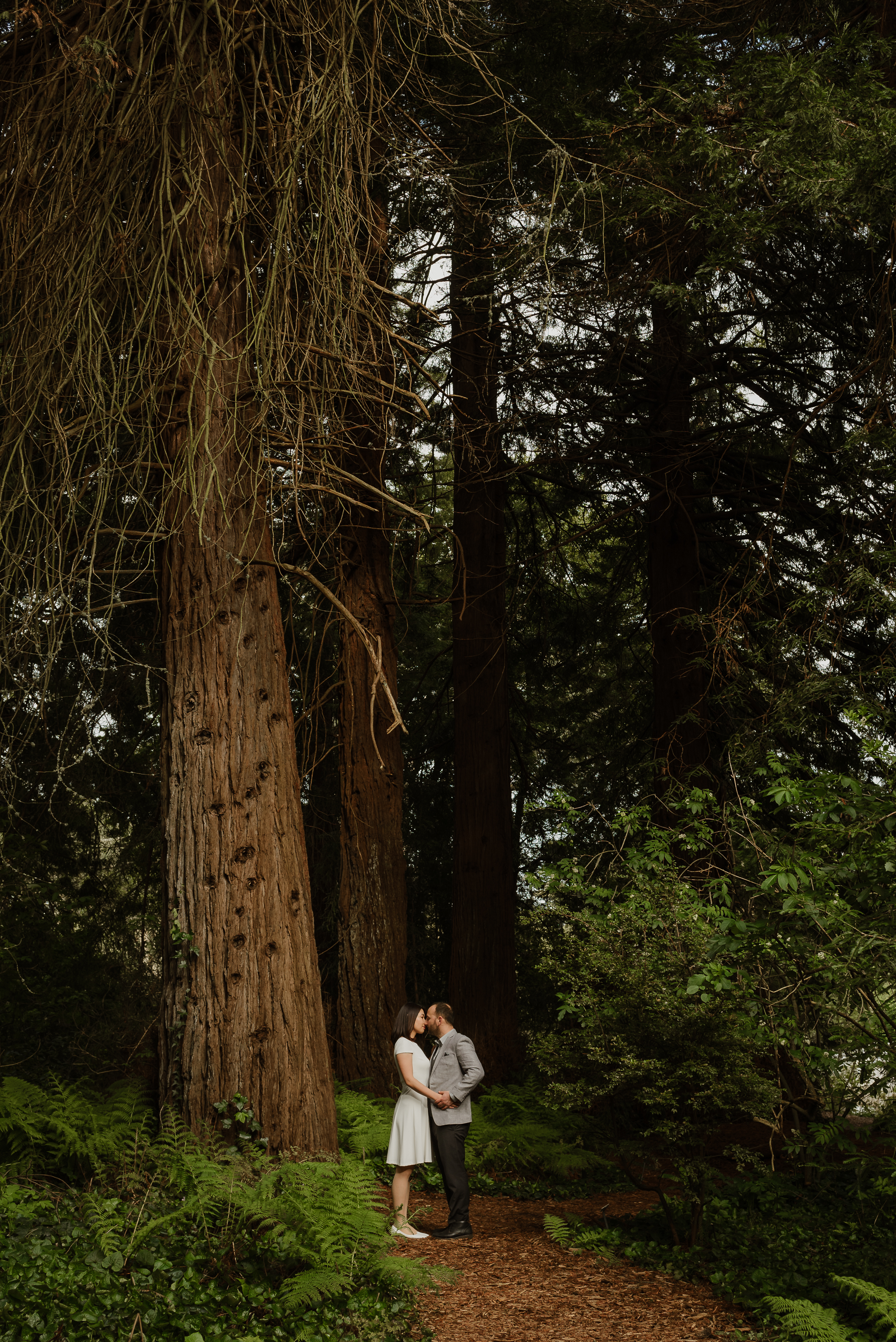 bamboo-pond-san-francisco-botanical-garden-engagement-shoot-vivianchen-059.jpg