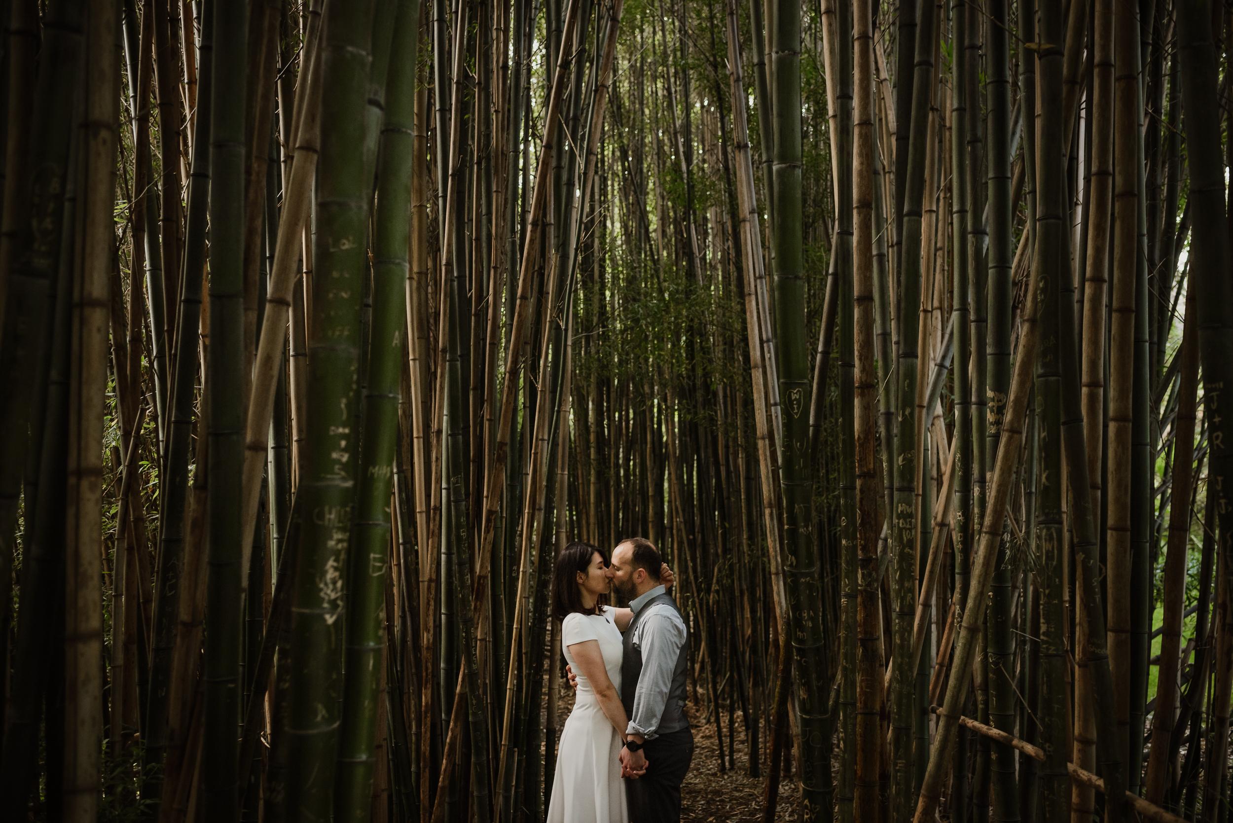 bamboo-pond-san-francisco-botanical-garden-engagement-shoot-vivianchen-125.jpg