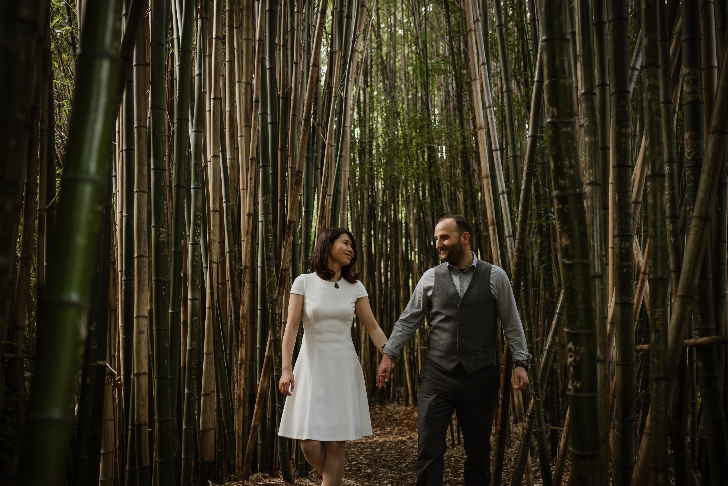 bamboo-pond-san-francisco-botanical-garden-engagement-shoot-vivianchen-128.jpg