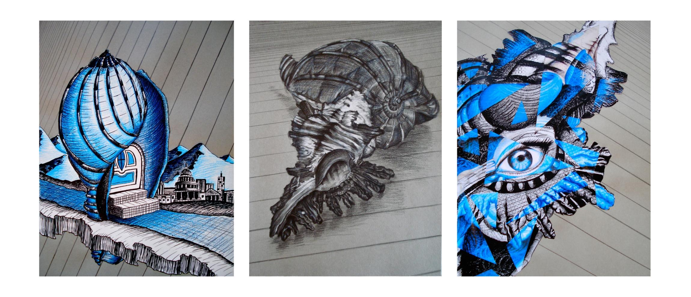 Shell Triptych.jpg