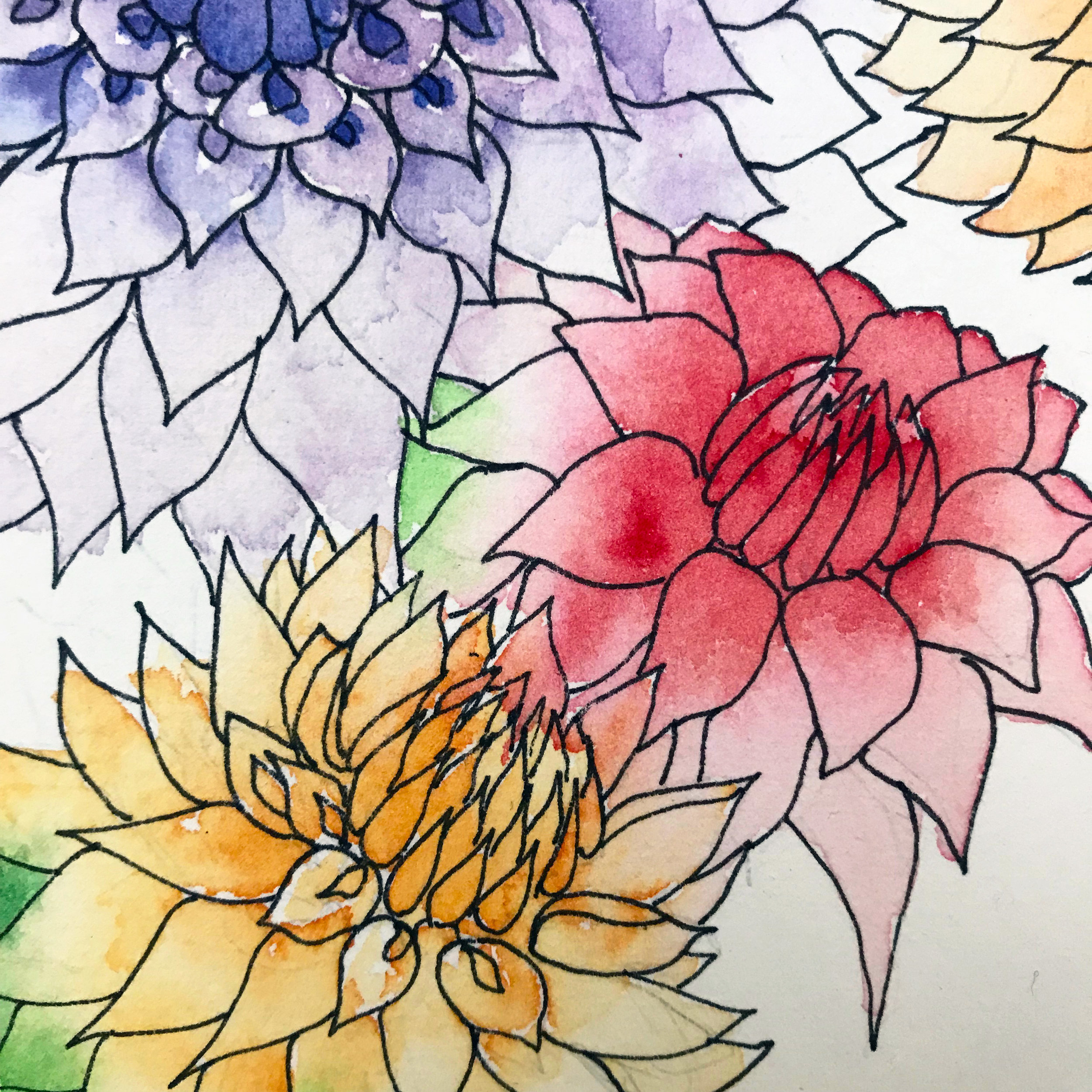 Using a hot press paper, the micron pen goes on very smoothly and the pigment of the watercolors gently blend as the paper absorbs water quickly, by danielleandco.com