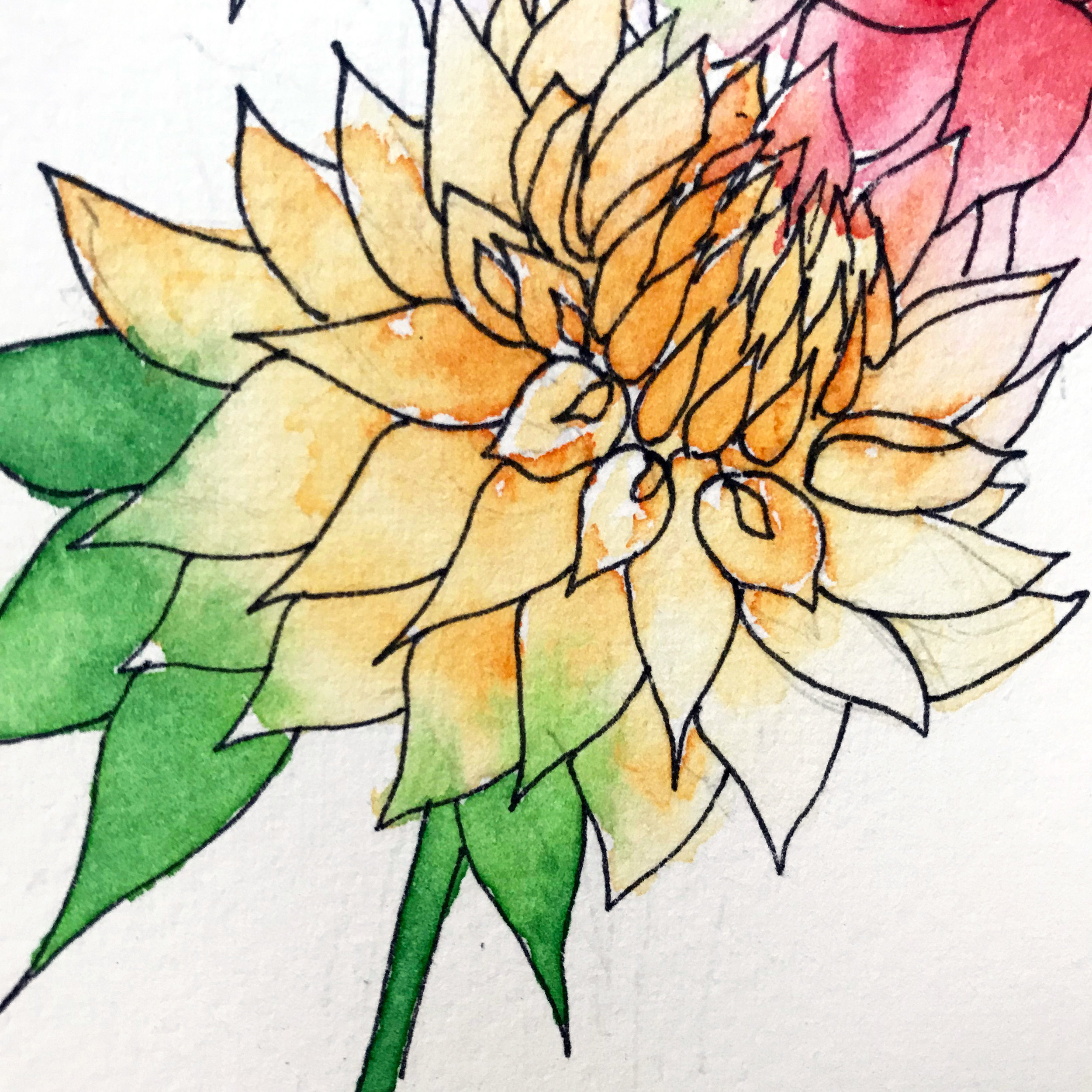 The yellow of the petals and the green of the leaves bleed into each other, which is not a bad thing with watercolor! It's part of the magic. by danielleandco.com